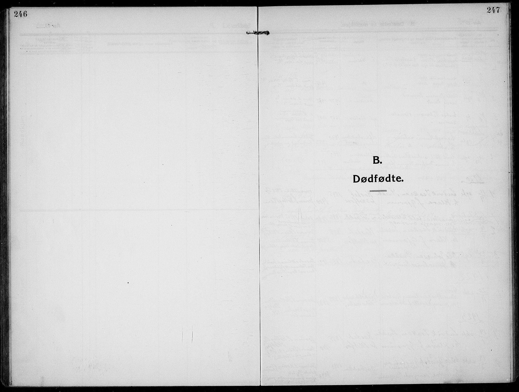 SAKO, Solum kirkebøker, F/Fb/L0004: Ministerialbok nr. II 4, 1913-1924, s. 246-247