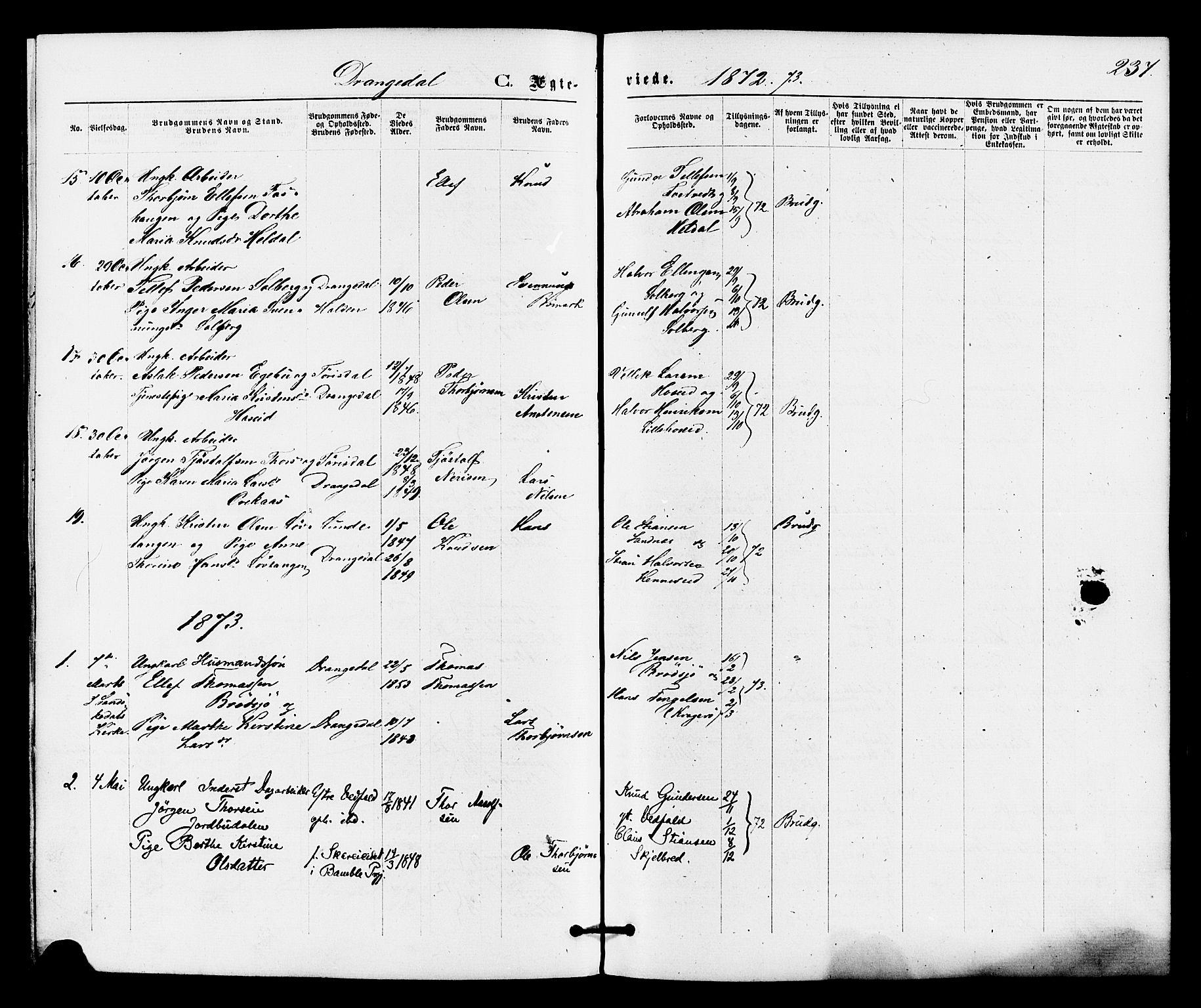 SAKO, Drangedal kirkebøker, F/Fa/L0009: Ministerialbok nr. 9 /1, 1872-1884, s. 237
