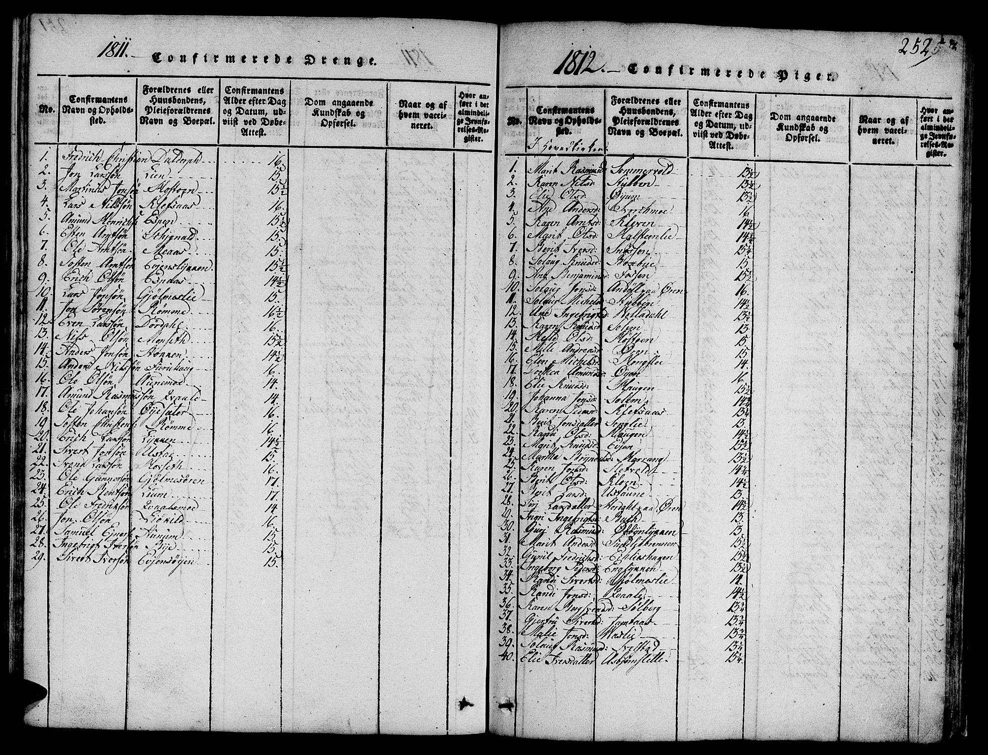 SAT, Ministerialprotokoller, klokkerbøker og fødselsregistre - Sør-Trøndelag, 668/L0803: Ministerialbok nr. 668A03, 1800-1826, s. 252