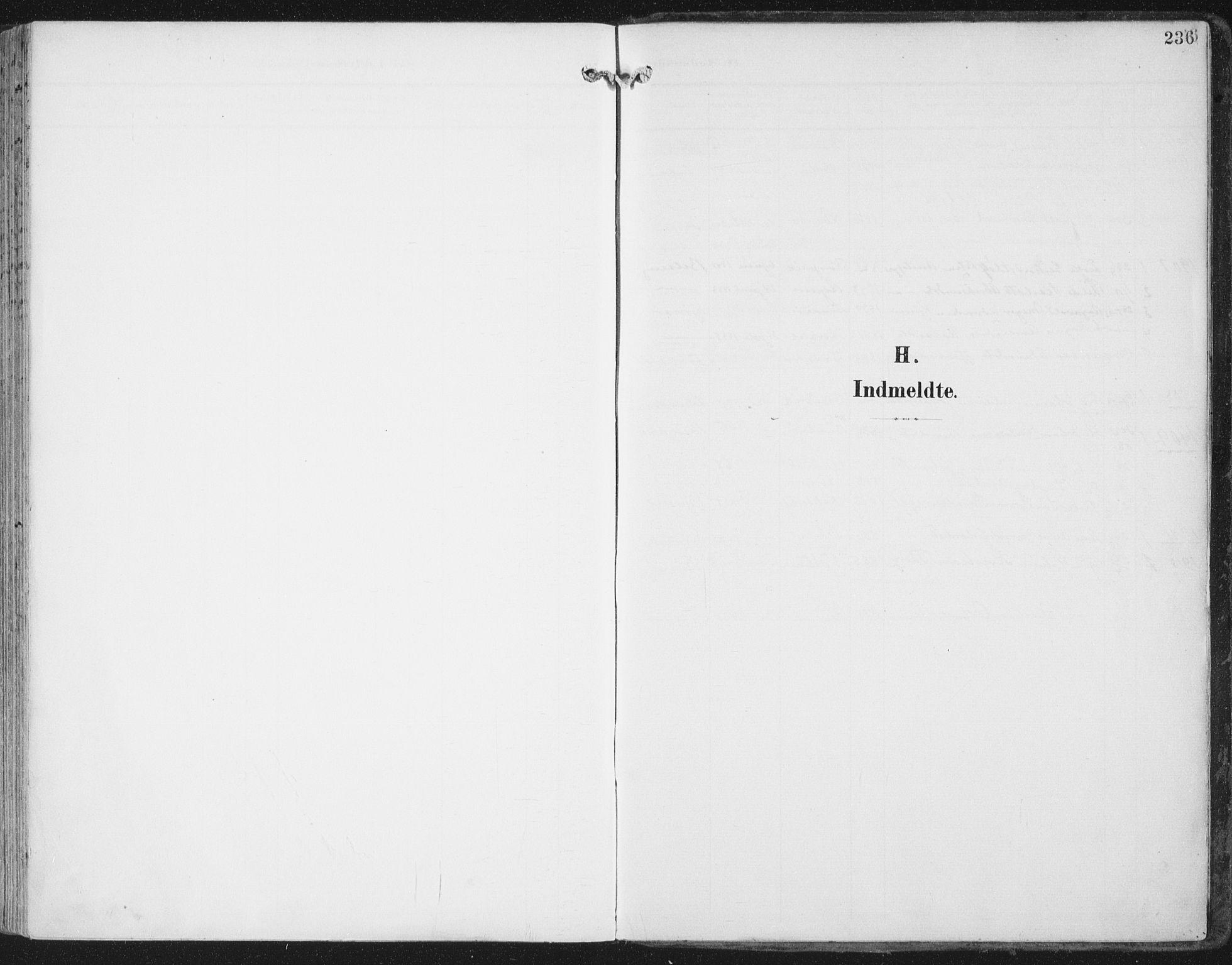 SAT, Ministerialprotokoller, klokkerbøker og fødselsregistre - Nord-Trøndelag, 786/L0688: Ministerialbok nr. 786A04, 1899-1912, s. 236