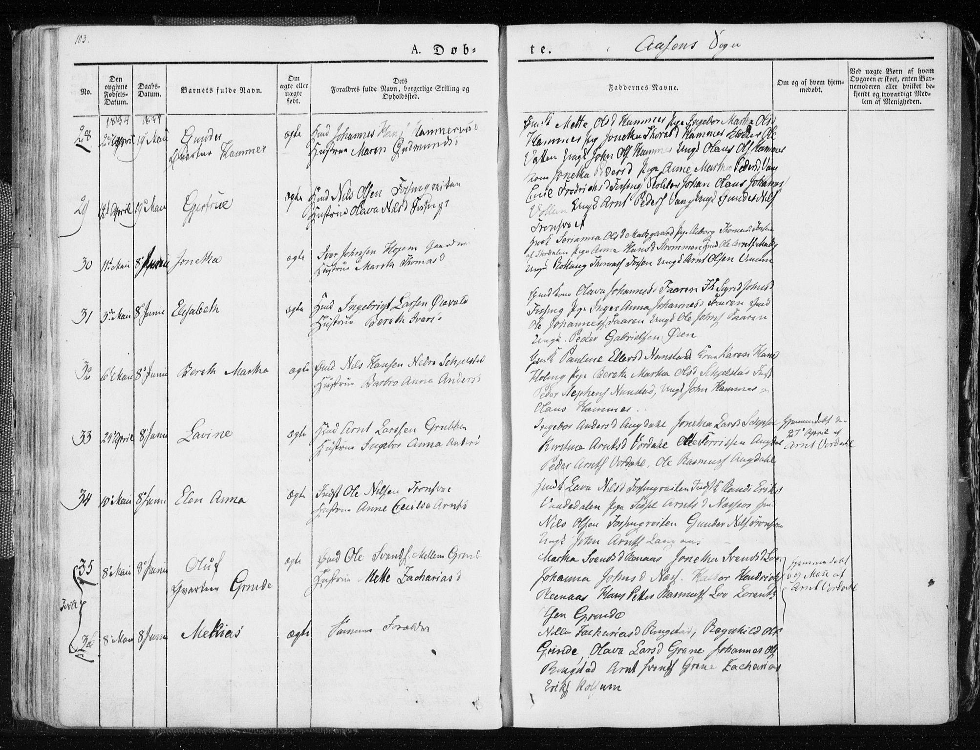 SAT, Ministerialprotokoller, klokkerbøker og fødselsregistre - Nord-Trøndelag, 713/L0114: Ministerialbok nr. 713A05, 1827-1839, s. 103