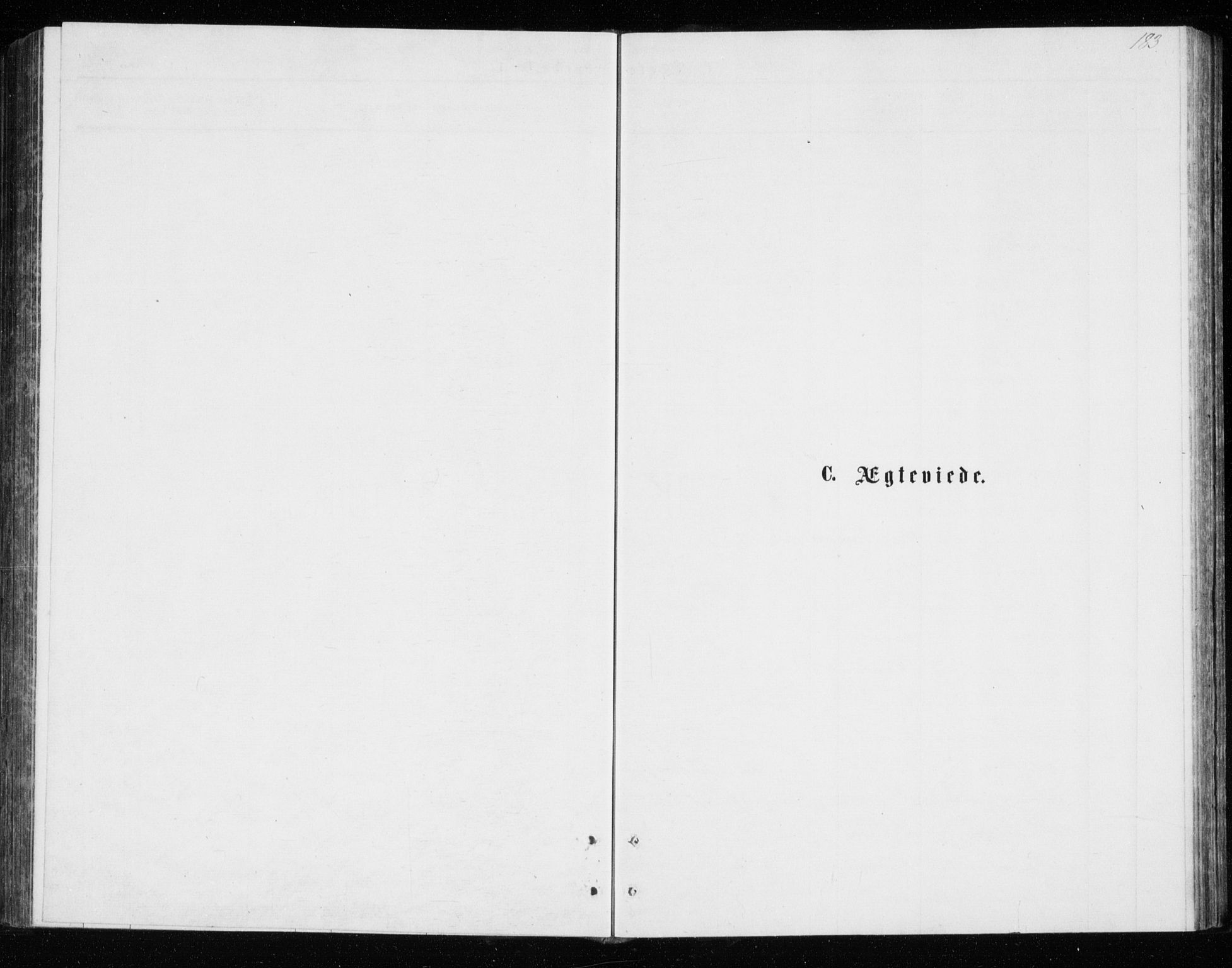 SATØ, Tromsø sokneprestkontor/stiftsprosti/domprosti, G/Gb/L0008klokker: Klokkerbok nr. 8, 1875-1879, s. 183