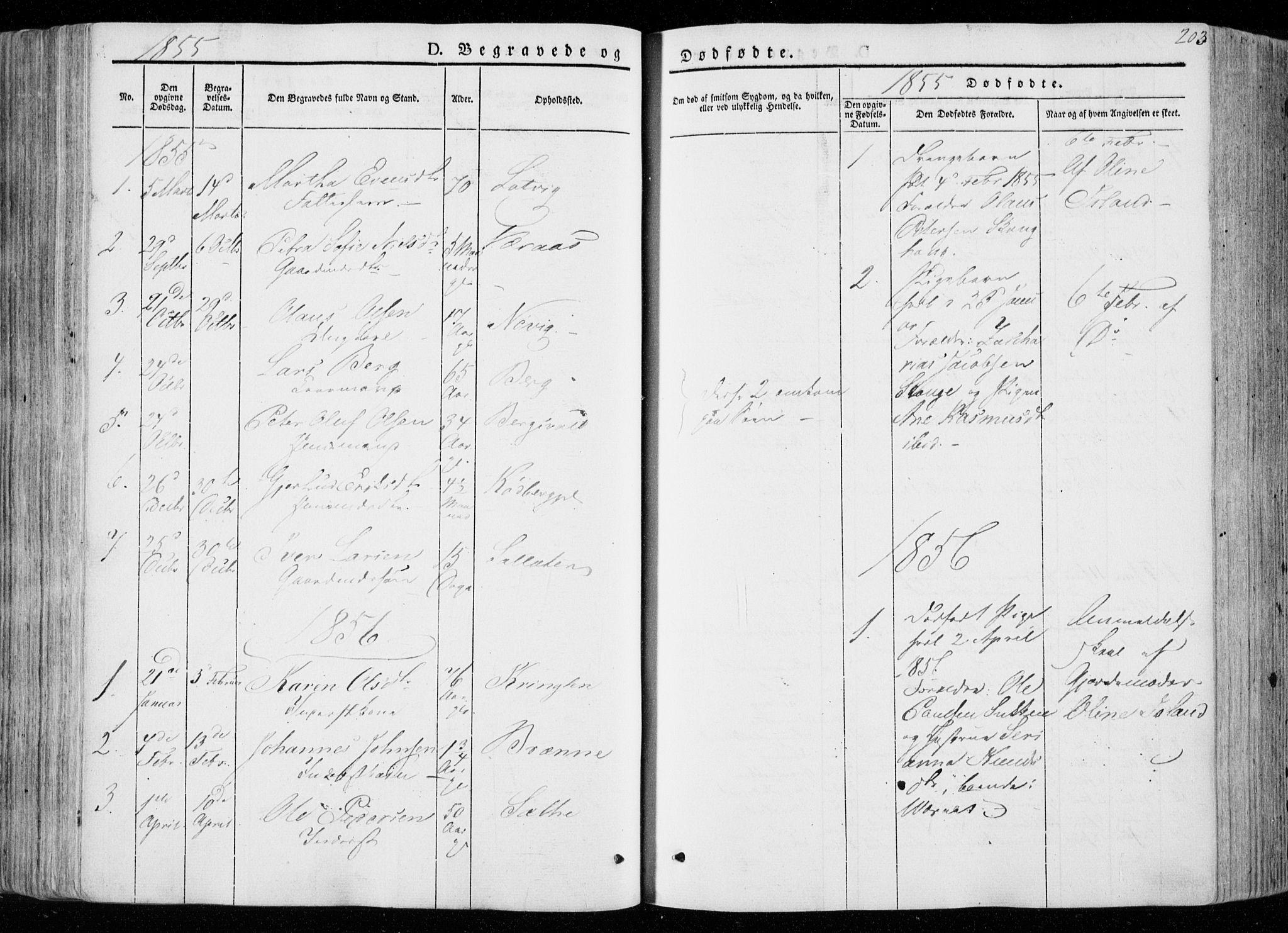 SAT, Ministerialprotokoller, klokkerbøker og fødselsregistre - Nord-Trøndelag, 722/L0218: Ministerialbok nr. 722A05, 1843-1868, s. 203