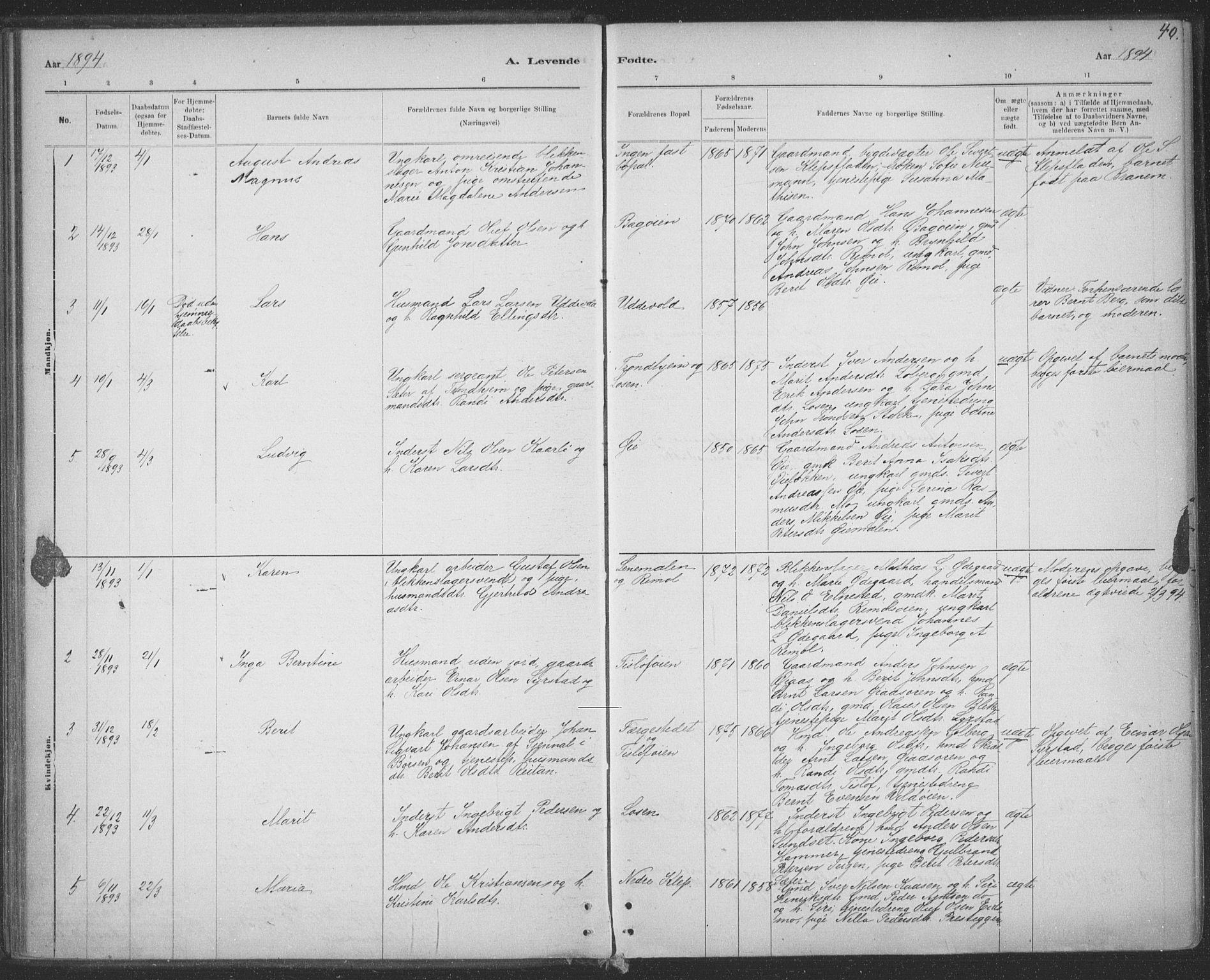 SAT, Ministerialprotokoller, klokkerbøker og fødselsregistre - Sør-Trøndelag, 691/L1085: Ministerialbok nr. 691A17, 1887-1908, s. 40