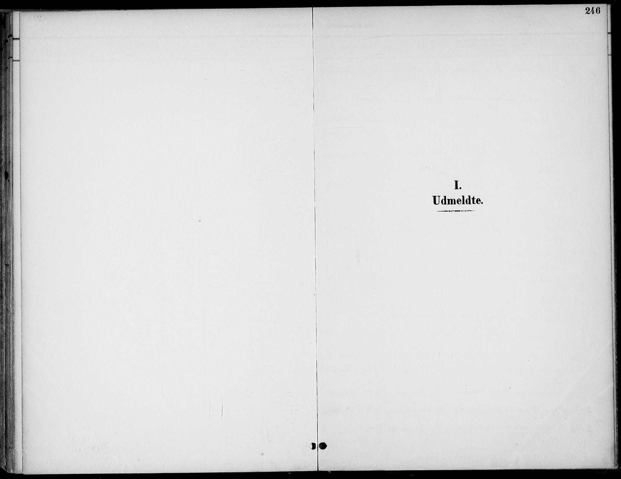 SAKO, Drangedal kirkebøker, F/Fa/L0012: Ministerialbok nr. 12, 1895-1905, s. 246
