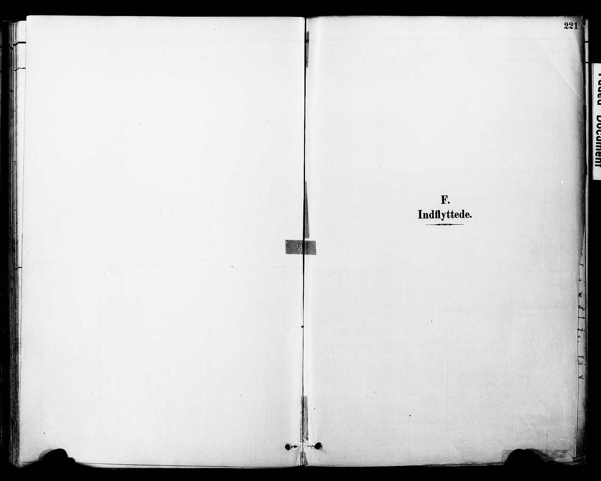 SAT, Ministerialprotokoller, klokkerbøker og fødselsregistre - Nord-Trøndelag, 757/L0505: Ministerialbok nr. 757A01, 1882-1904, s. 221