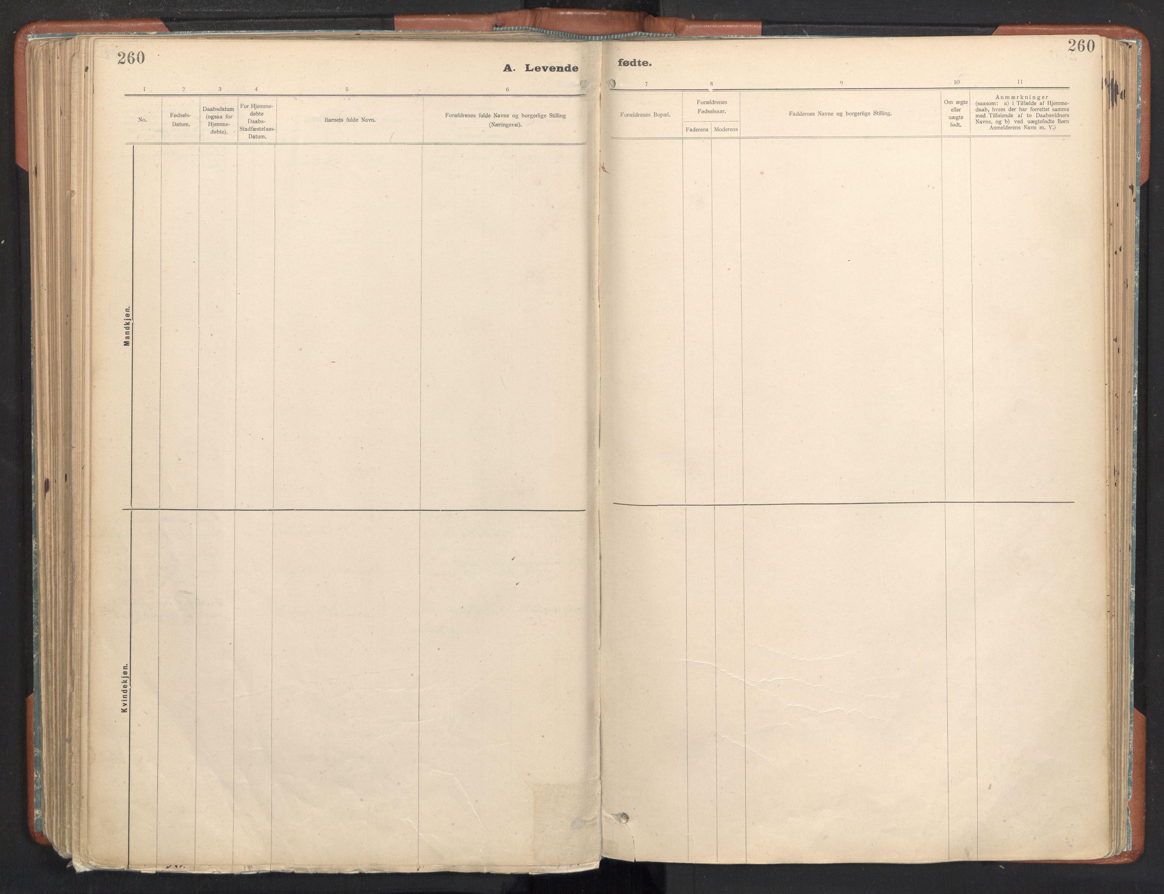 SAT, Ministerialprotokoller, klokkerbøker og fødselsregistre - Sør-Trøndelag, 605/L0243: Ministerialbok nr. 605A05, 1908-1923, s. 260