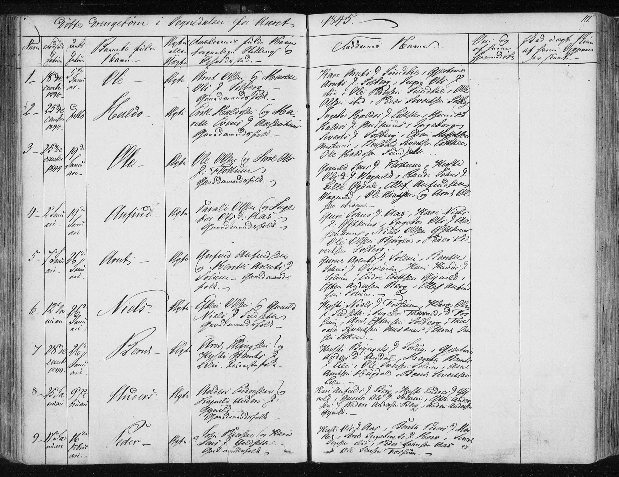 SAT, Ministerialprotokoller, klokkerbøker og fødselsregistre - Sør-Trøndelag, 687/L0999: Ministerialbok nr. 687A05 /3, 1843-1848, s. 111