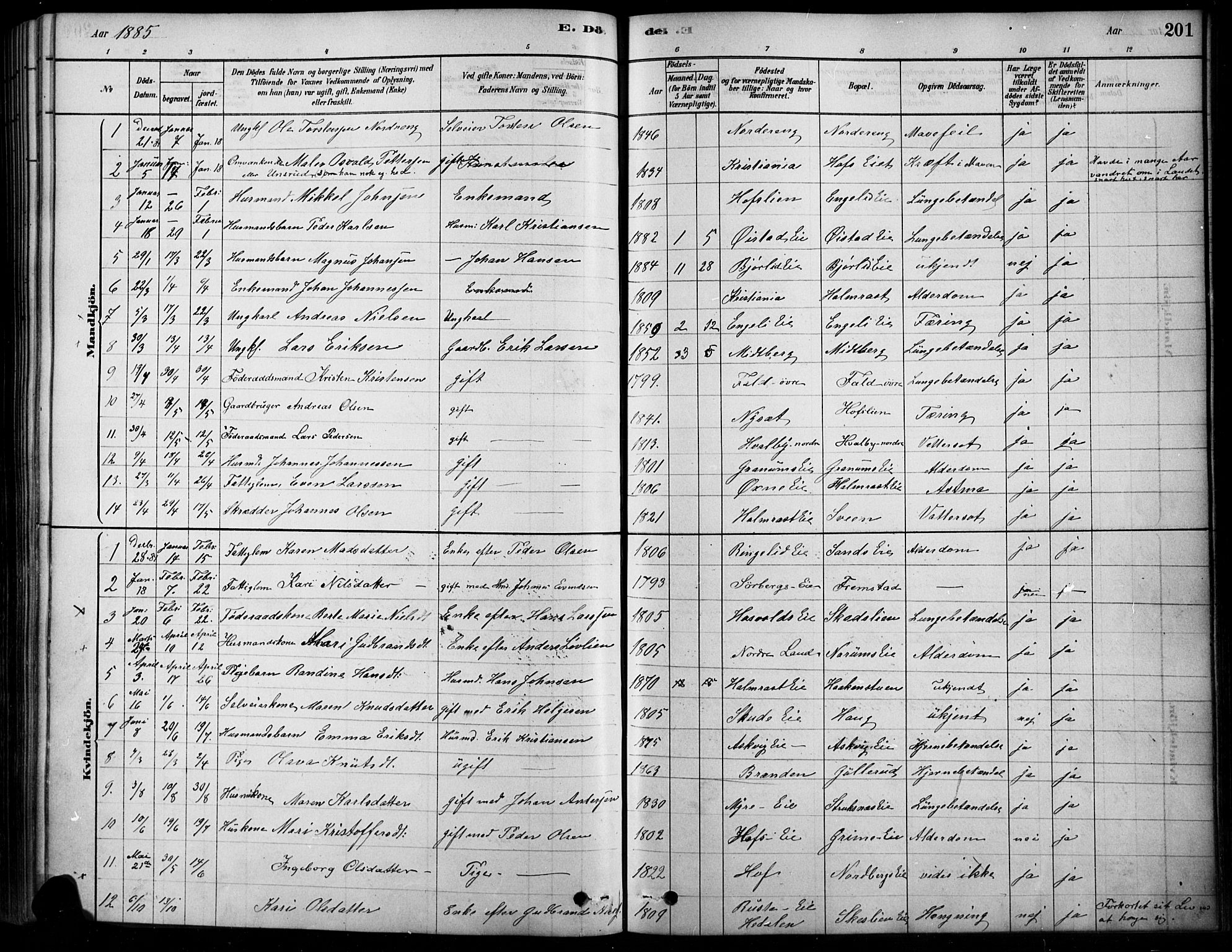 SAH, Søndre Land prestekontor, K/L0003: Ministerialbok nr. 3, 1878-1894, s. 201