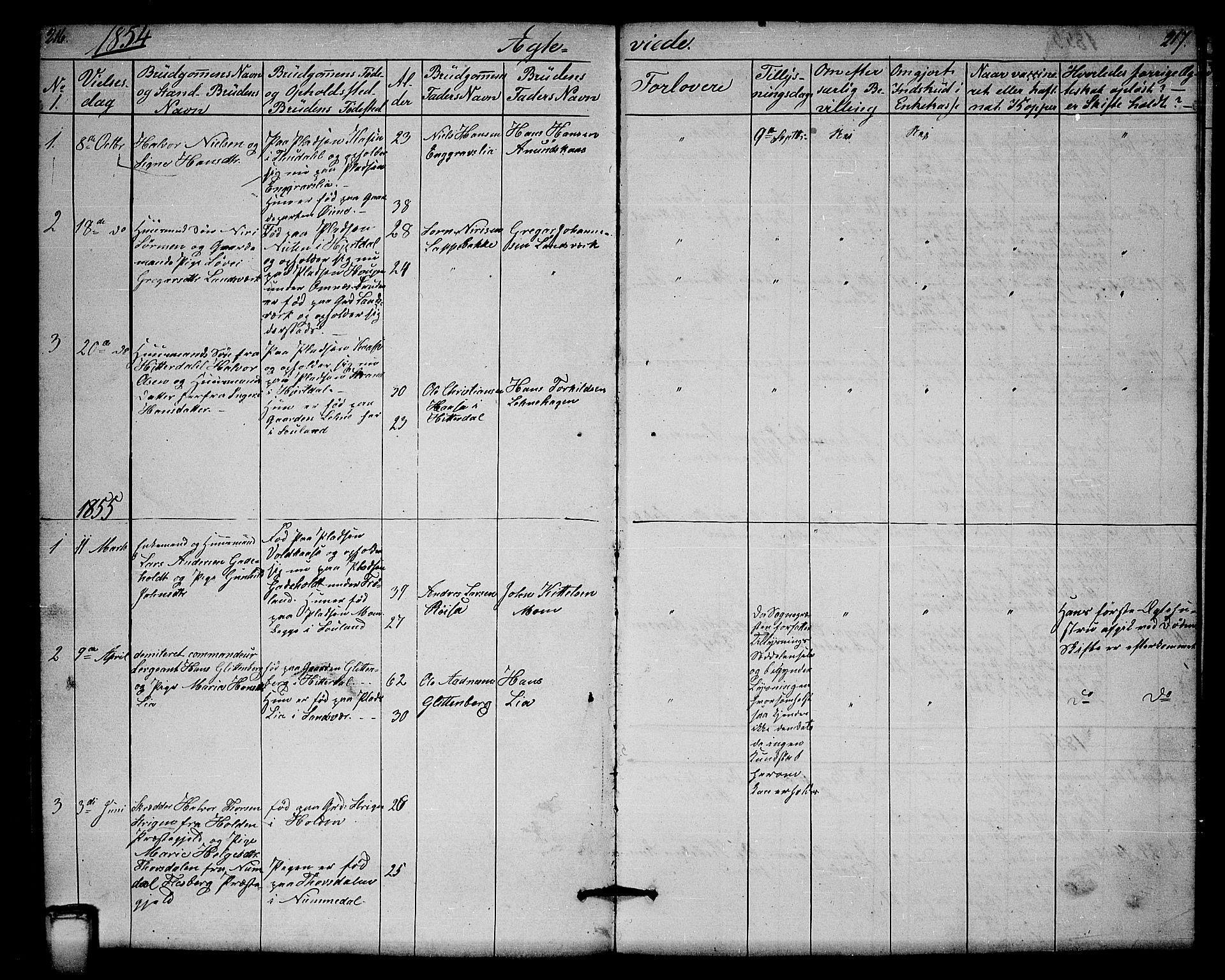SAKO, Hjartdal kirkebøker, G/Gb/L0002: Klokkerbok nr. II 2, 1854-1884, s. 216-217