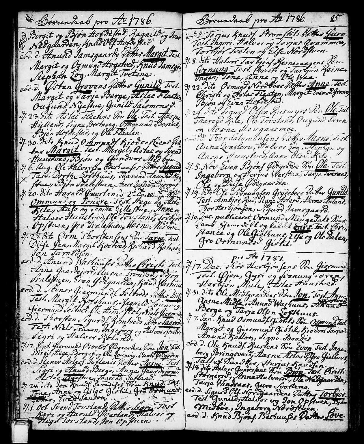 SAKO, Vinje kirkebøker, F/Fa/L0002: Ministerialbok nr. I 2, 1767-1814, s. 85