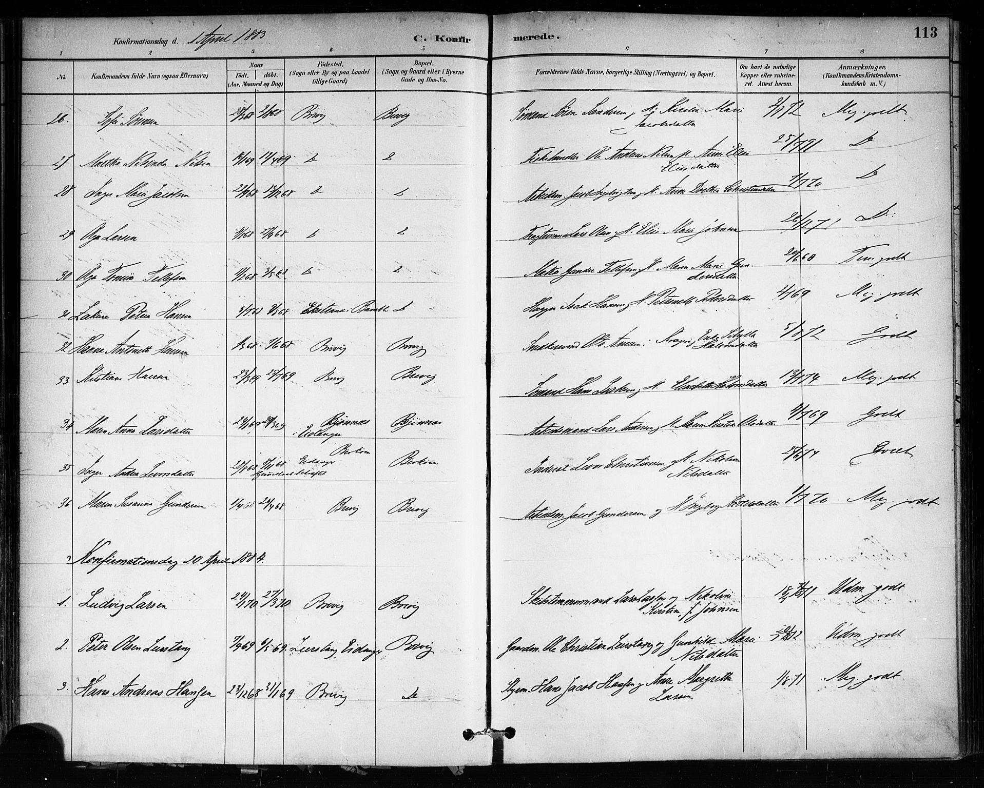SAKO, Brevik kirkebøker, F/Fa/L0007: Ministerialbok nr. 7, 1882-1900, s. 113