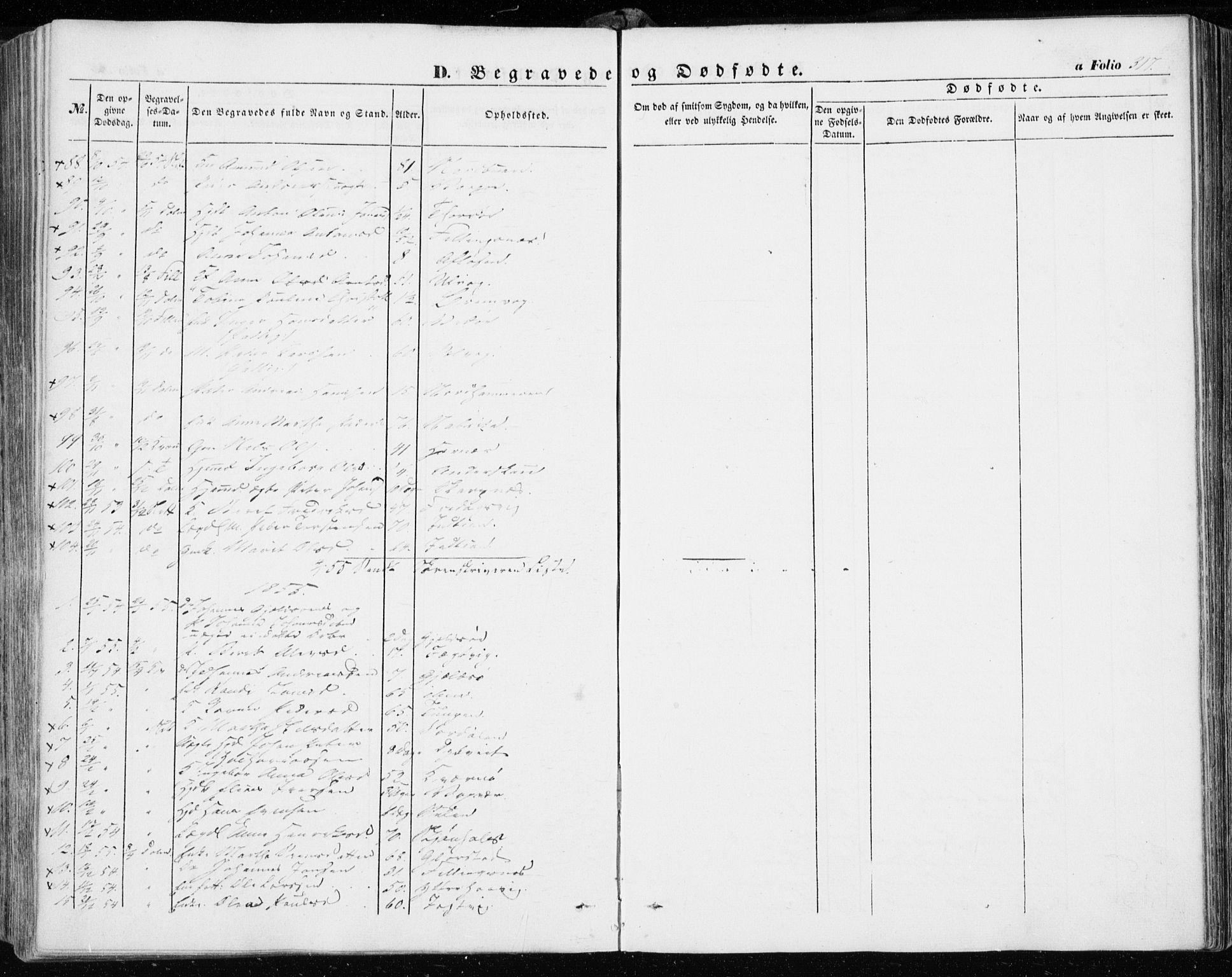 SAT, Ministerialprotokoller, klokkerbøker og fødselsregistre - Sør-Trøndelag, 634/L0530: Ministerialbok nr. 634A06, 1852-1860, s. 317