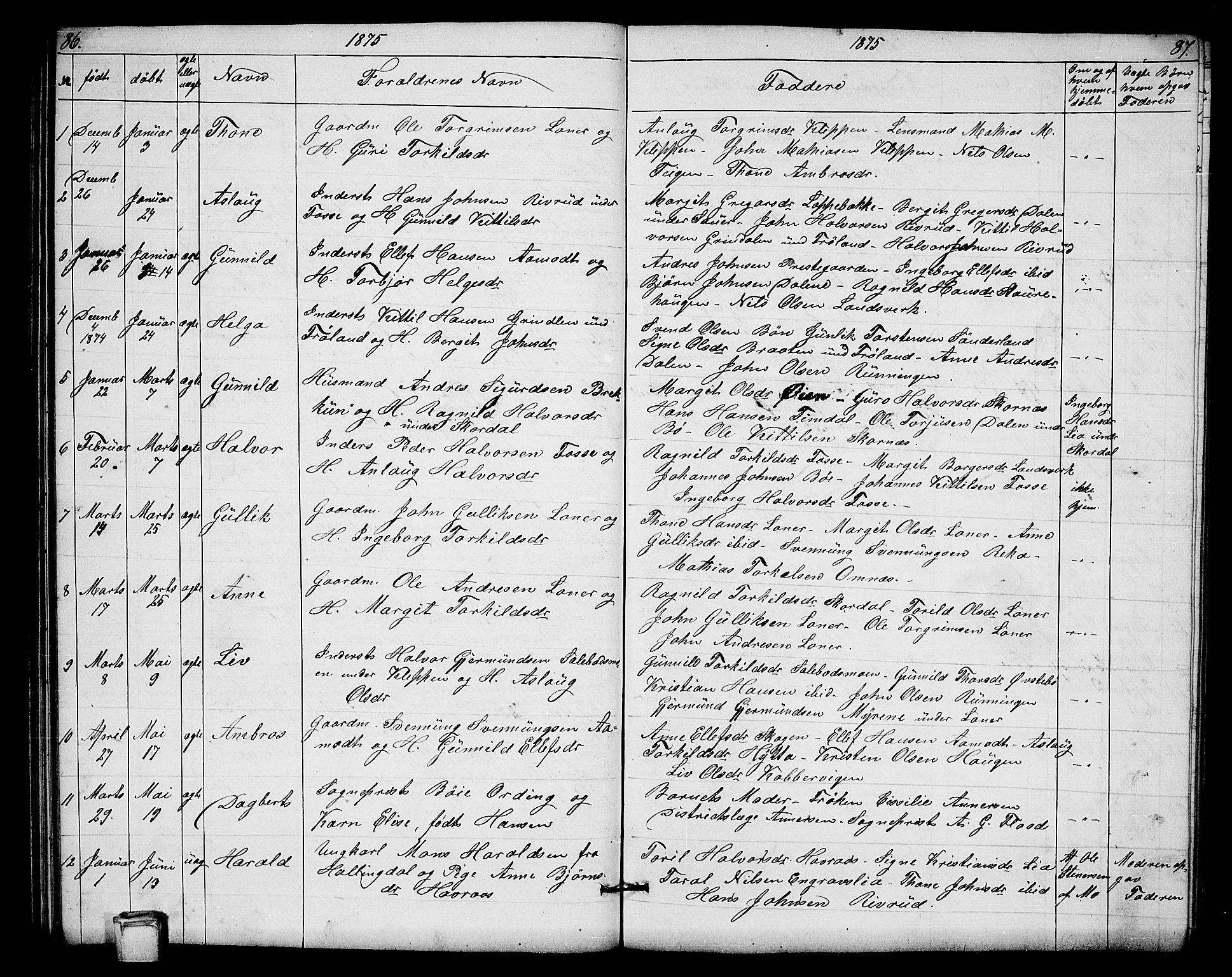 SAKO, Hjartdal kirkebøker, G/Gb/L0002: Klokkerbok nr. II 2, 1854-1884, s. 86-87