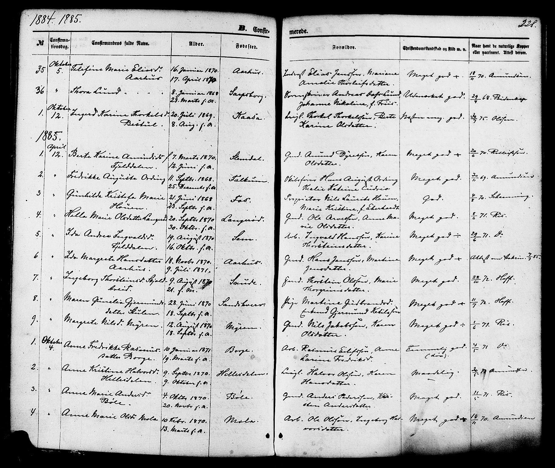 SAKO, Gjerpen kirkebøker, F/Fa/L0009: Ministerialbok nr. 9, 1872-1885, s. 228