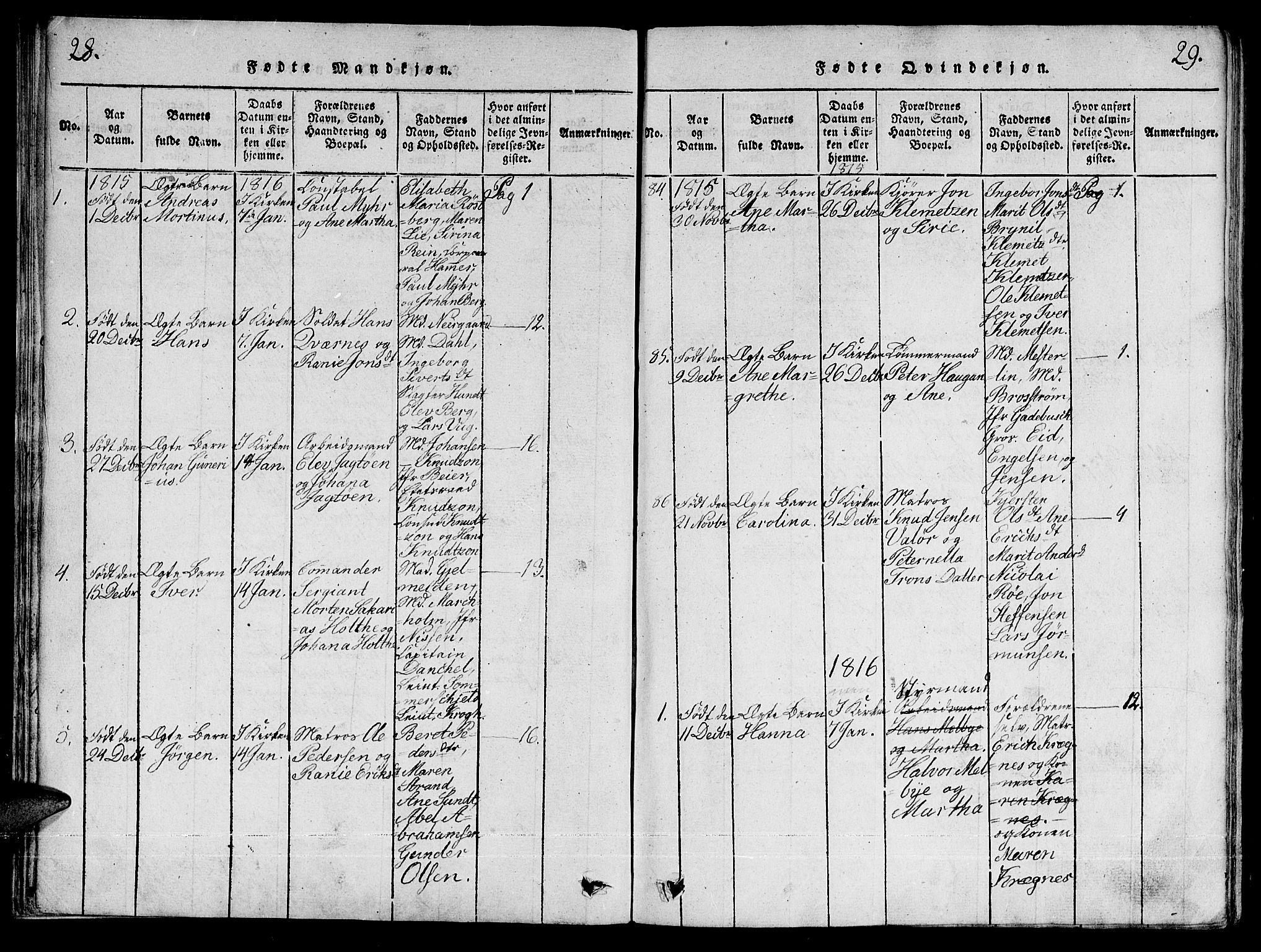 SAT, Ministerialprotokoller, klokkerbøker og fødselsregistre - Sør-Trøndelag, 601/L0043: Ministerialbok nr. 601A11, 1815-1821, s. 28-29