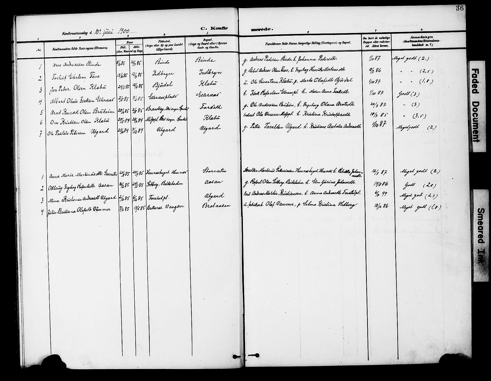 SAT, Ministerialprotokoller, klokkerbøker og fødselsregistre - Nord-Trøndelag, 746/L0452: Ministerialbok nr. 746A09, 1900-1908, s. 36