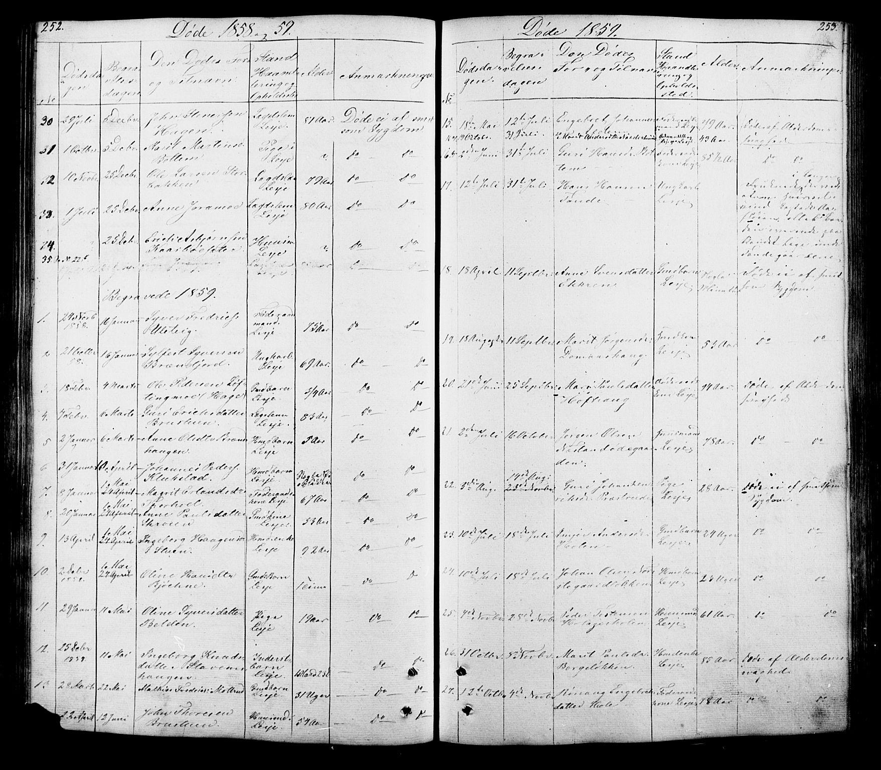 SAH, Lesja prestekontor, Klokkerbok nr. 5, 1850-1894, s. 252-253