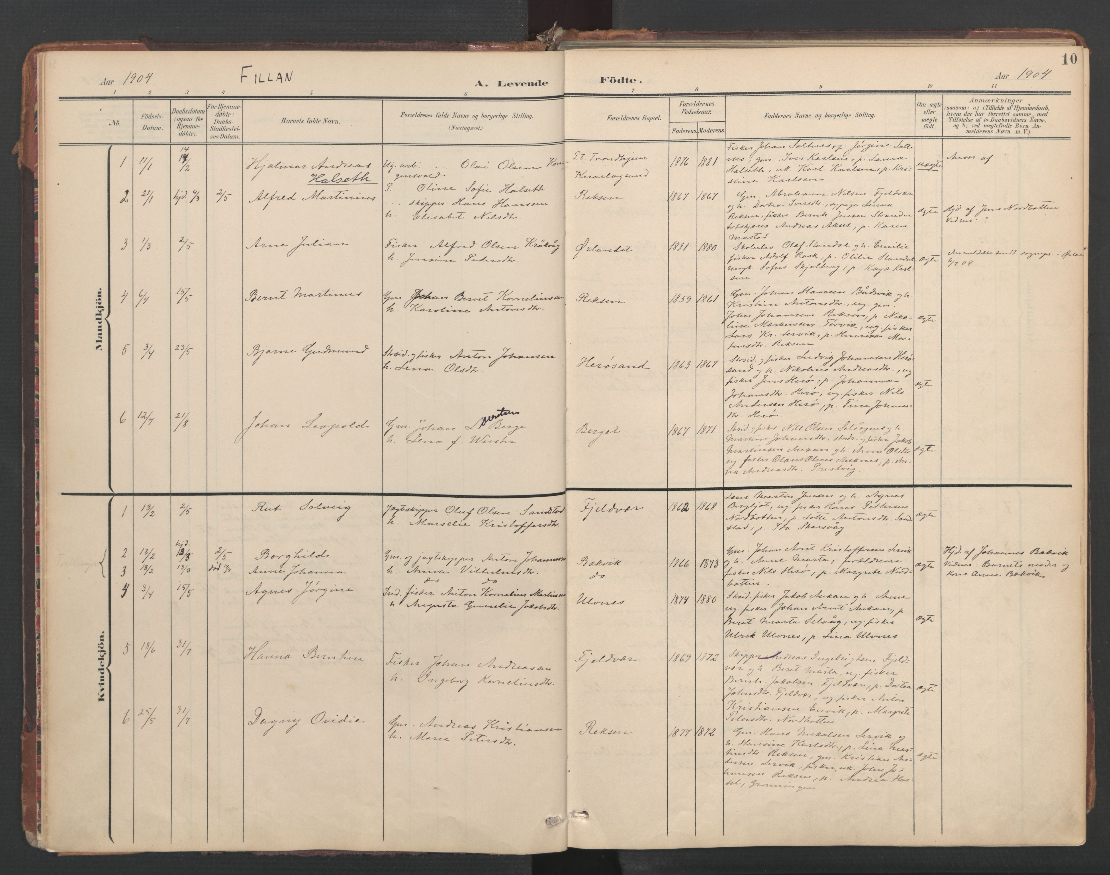 SAT, Ministerialprotokoller, klokkerbøker og fødselsregistre - Sør-Trøndelag, 638/L0568: Ministerialbok nr. 638A01, 1901-1916, s. 10
