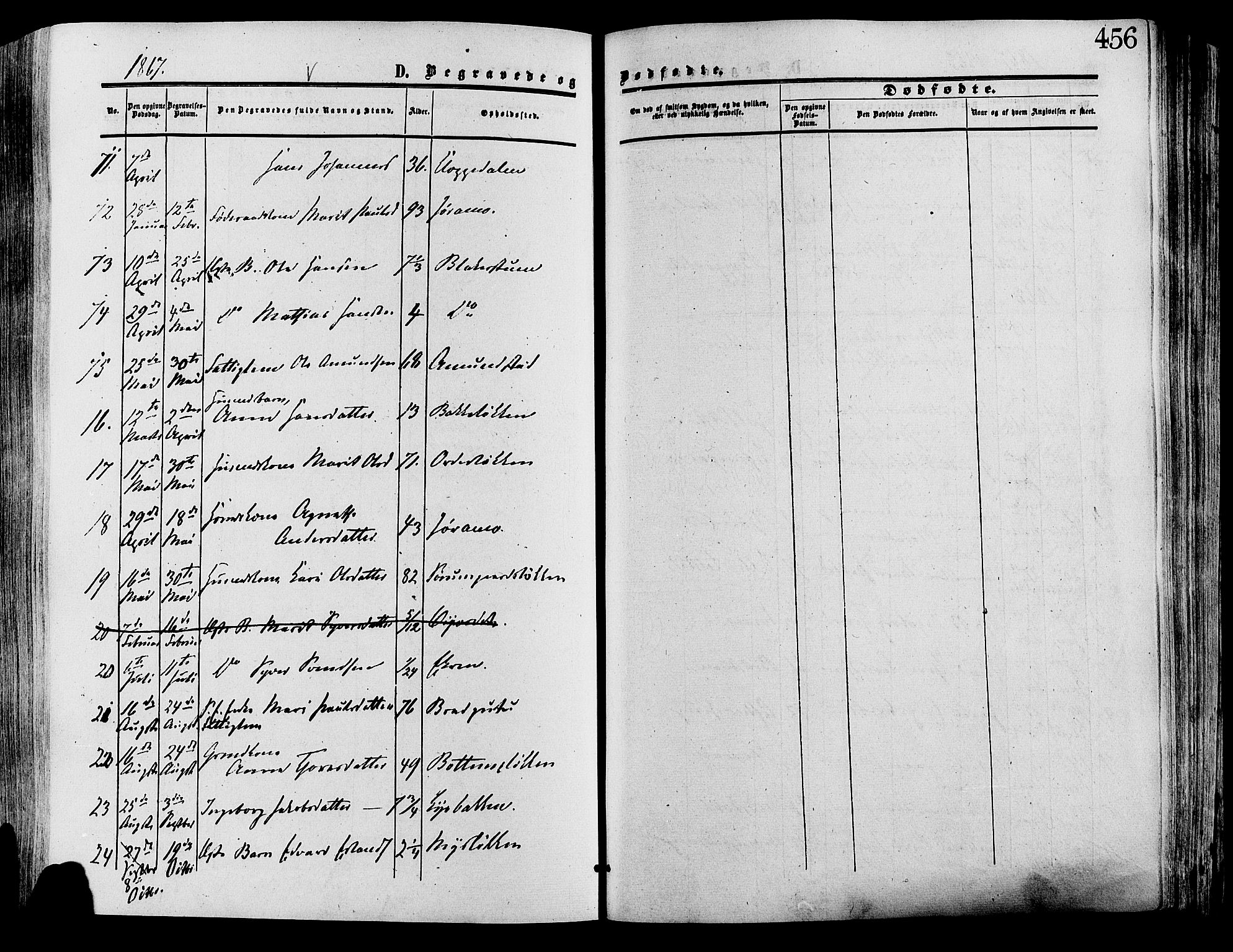 SAH, Lesja prestekontor, Ministerialbok nr. 8, 1854-1880, s. 456
