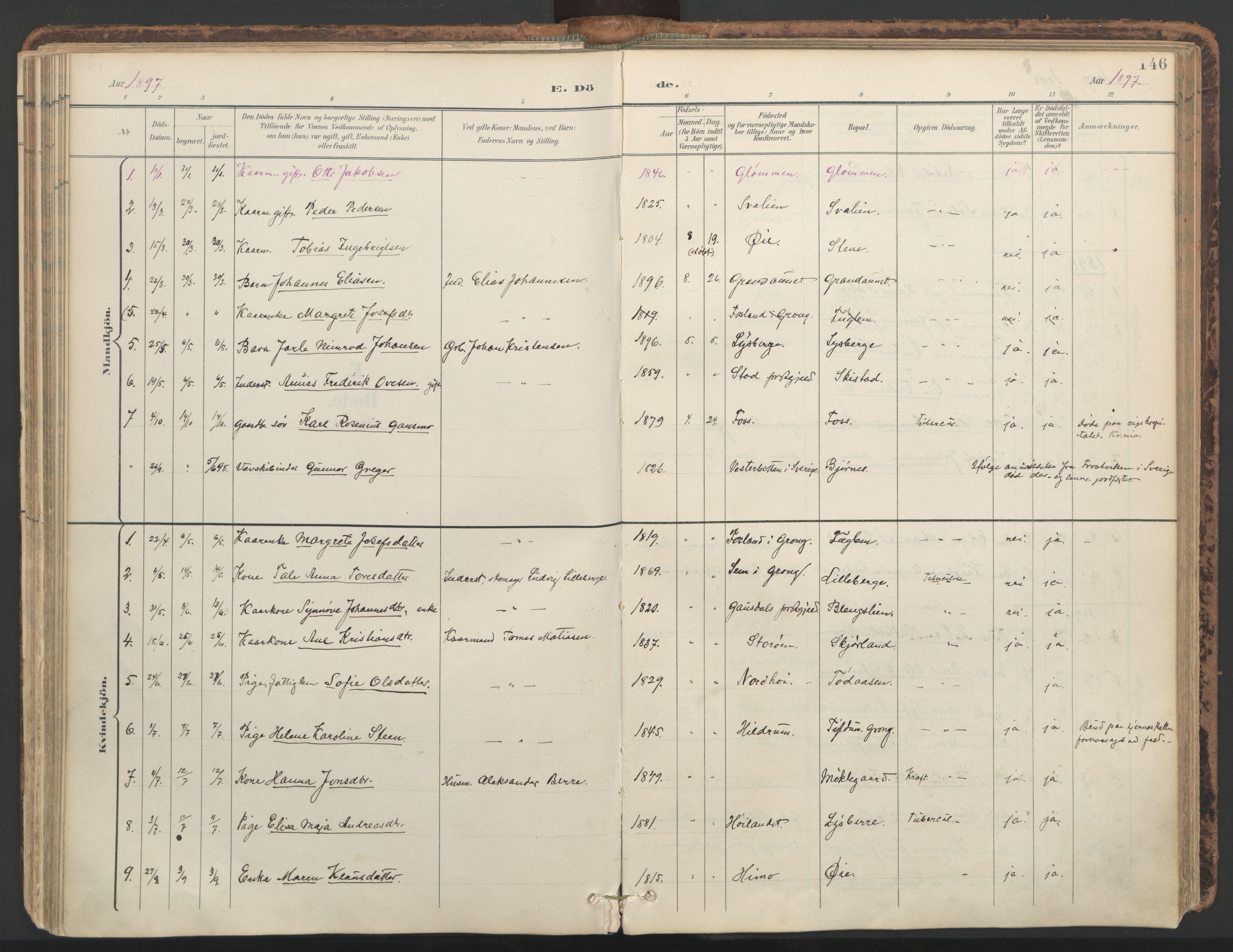 SAT, Ministerialprotokoller, klokkerbøker og fødselsregistre - Nord-Trøndelag, 764/L0556: Ministerialbok nr. 764A11, 1897-1924, s. 146