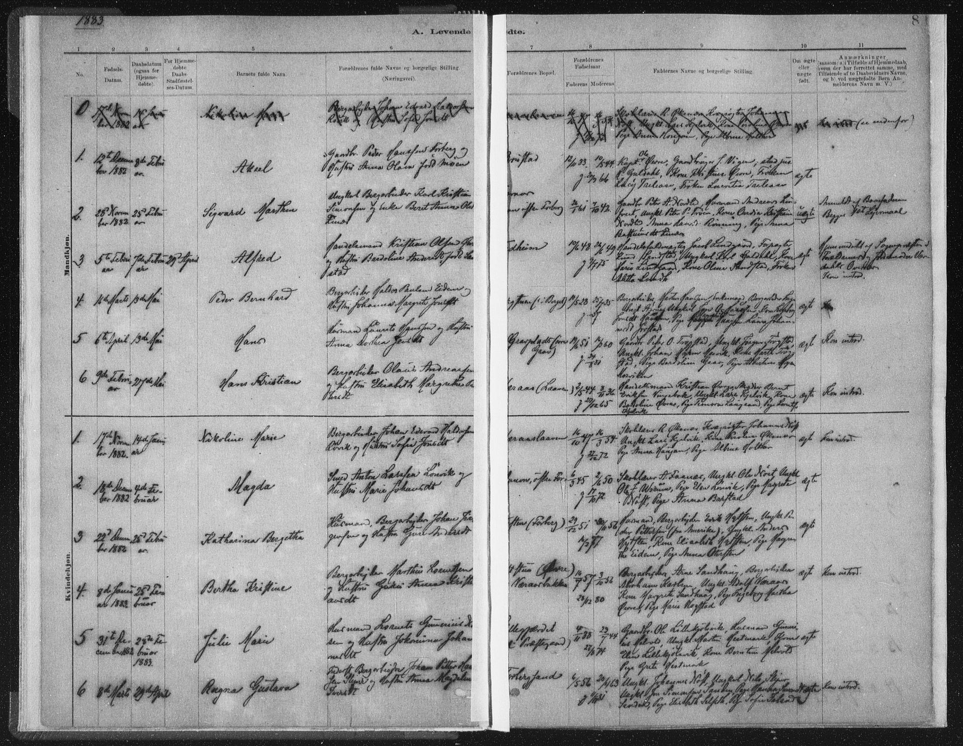 SAT, Ministerialprotokoller, klokkerbøker og fødselsregistre - Nord-Trøndelag, 722/L0220: Ministerialbok nr. 722A07, 1881-1908, s. 8