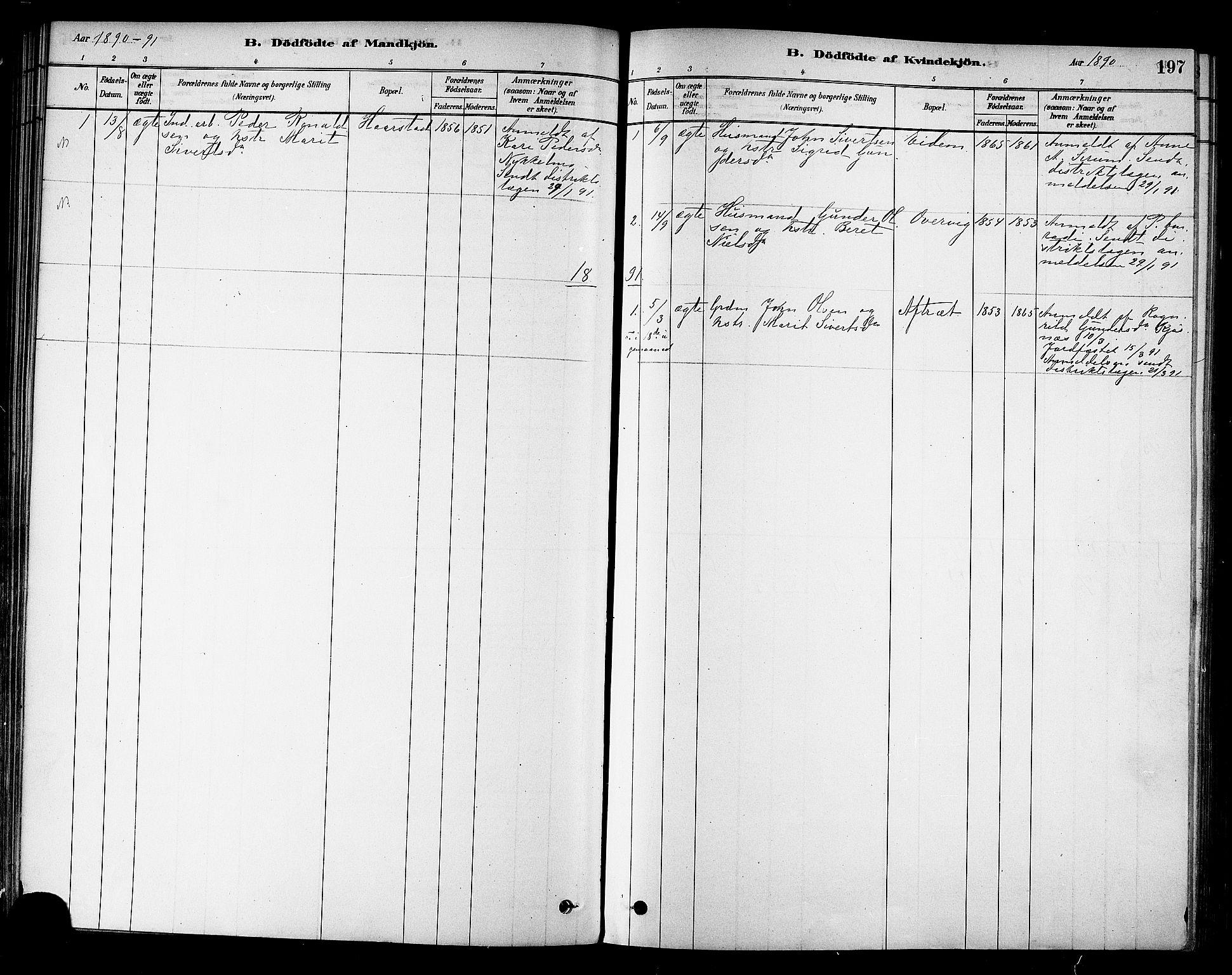 SAT, Ministerialprotokoller, klokkerbøker og fødselsregistre - Sør-Trøndelag, 695/L1148: Ministerialbok nr. 695A08, 1878-1891, s. 197