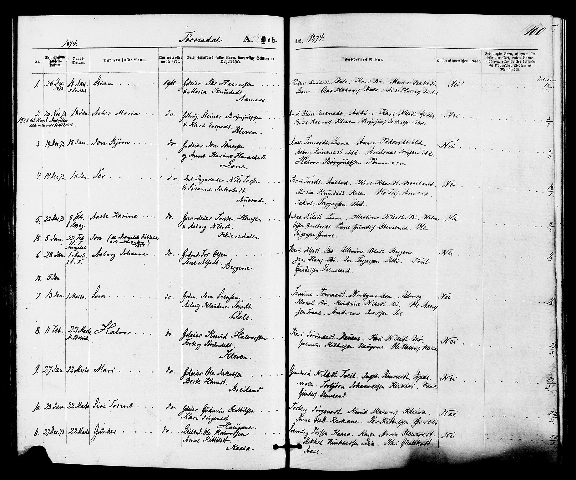 SAKO, Drangedal kirkebøker, F/Fa/L0009: Ministerialbok nr. 9 /2, 1872-1884, s. 100