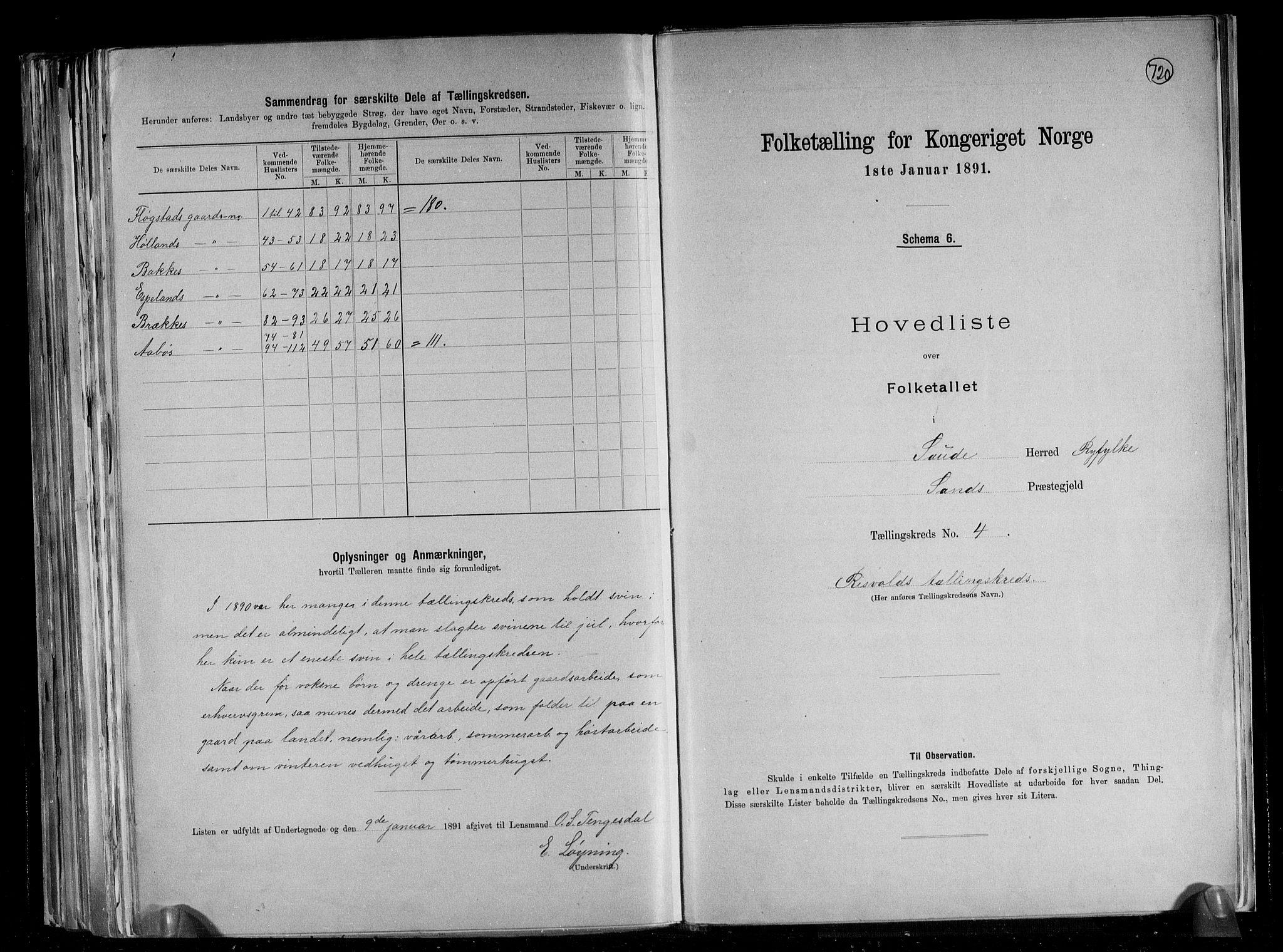 RA, Folketelling 1891 for 1135 Sauda herred, 1891, s. 12