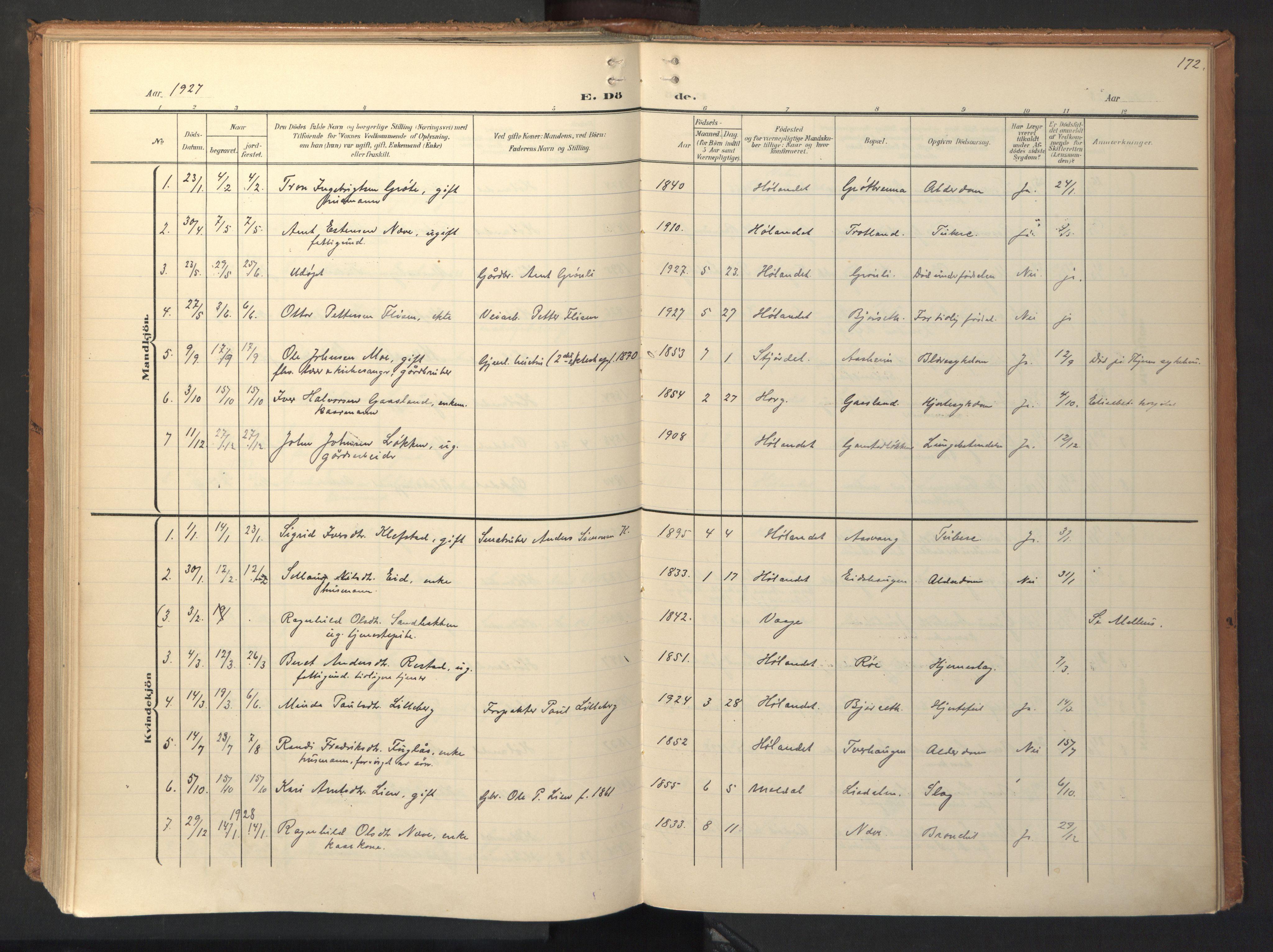 SAT, Ministerialprotokoller, klokkerbøker og fødselsregistre - Sør-Trøndelag, 694/L1128: Ministerialbok nr. 694A02, 1906-1931, s. 172