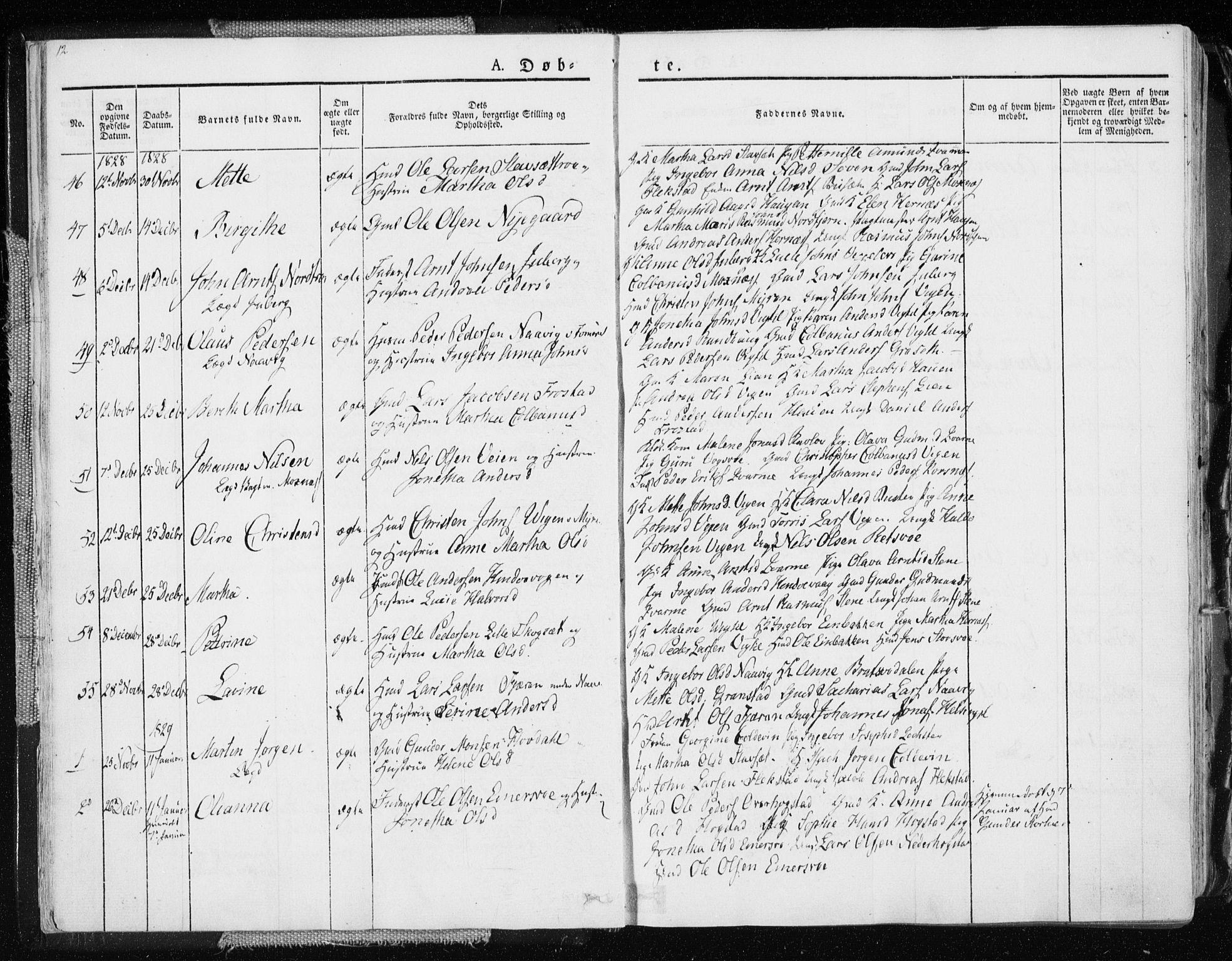 SAT, Ministerialprotokoller, klokkerbøker og fødselsregistre - Nord-Trøndelag, 713/L0114: Ministerialbok nr. 713A05, 1827-1839, s. 12