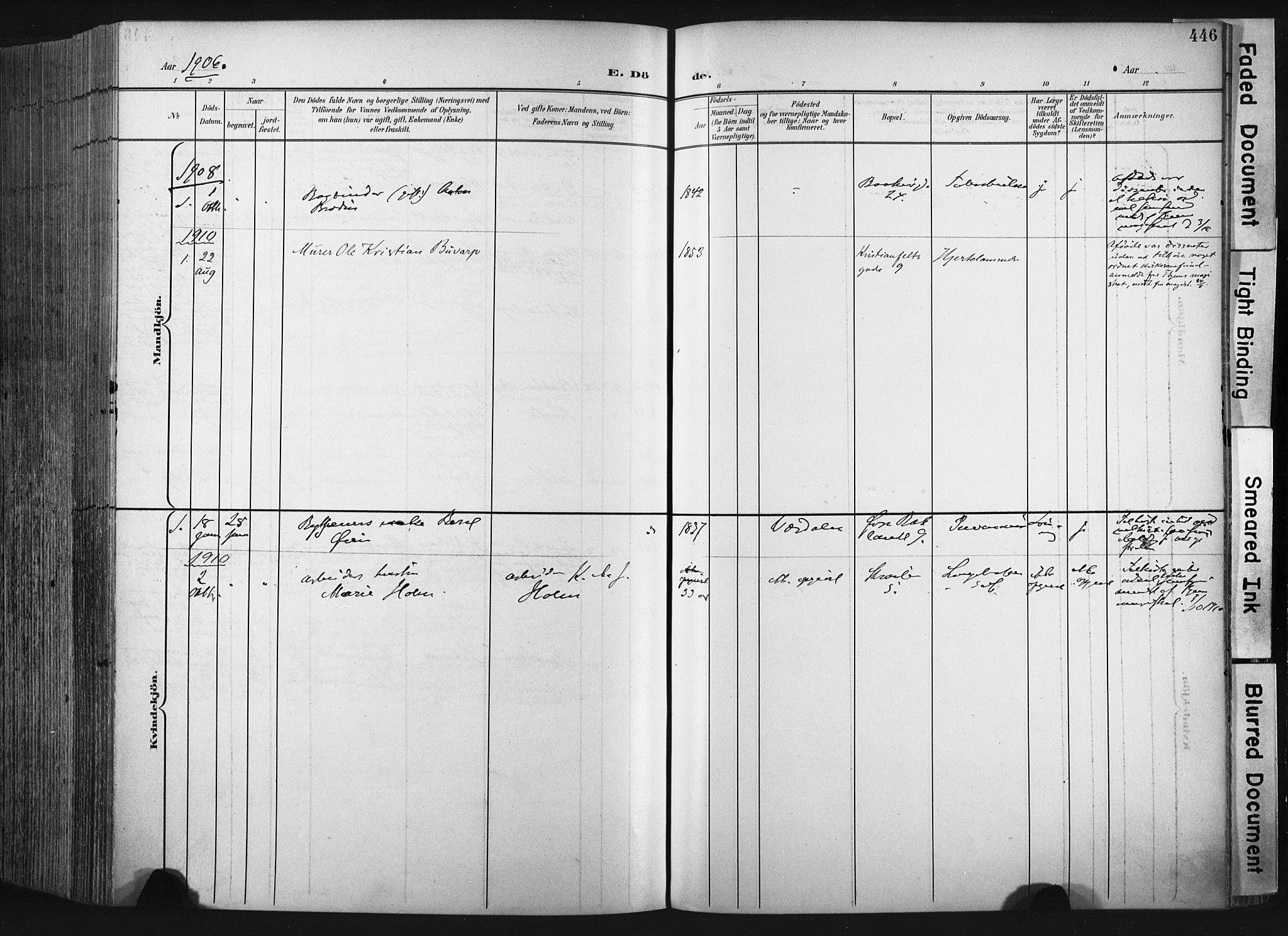 SAT, Ministerialprotokoller, klokkerbøker og fødselsregistre - Sør-Trøndelag, 604/L0201: Ministerialbok nr. 604A21, 1901-1911, s. 446
