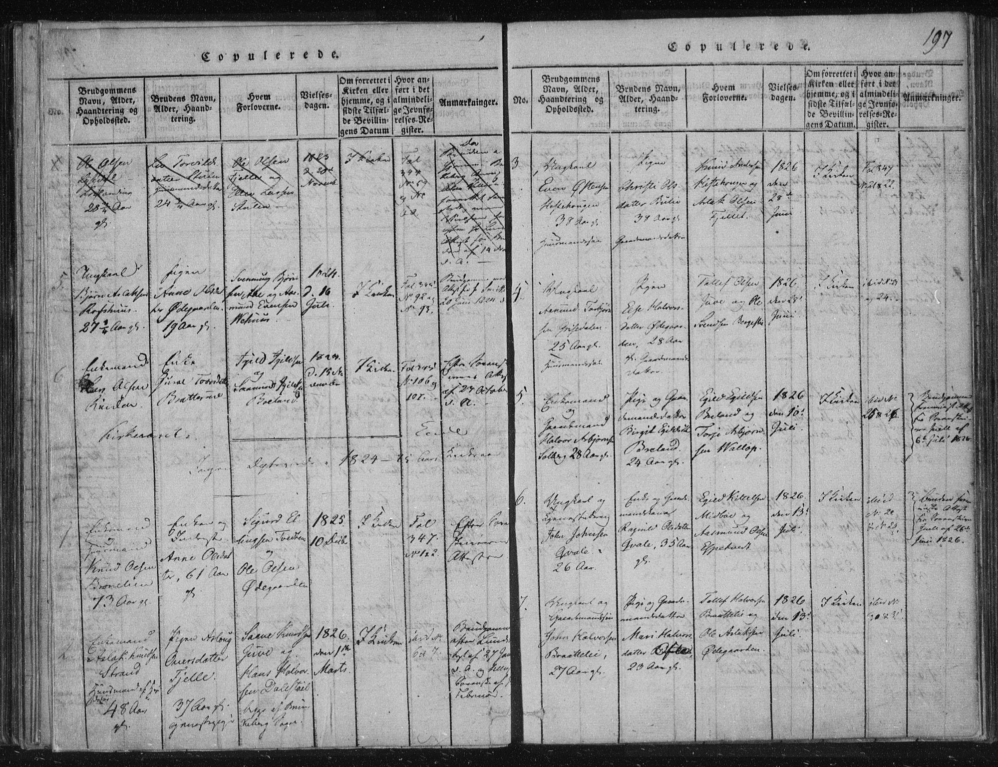 SAKO, Lårdal kirkebøker, F/Fc/L0001: Ministerialbok nr. III 1, 1815-1860, s. 197