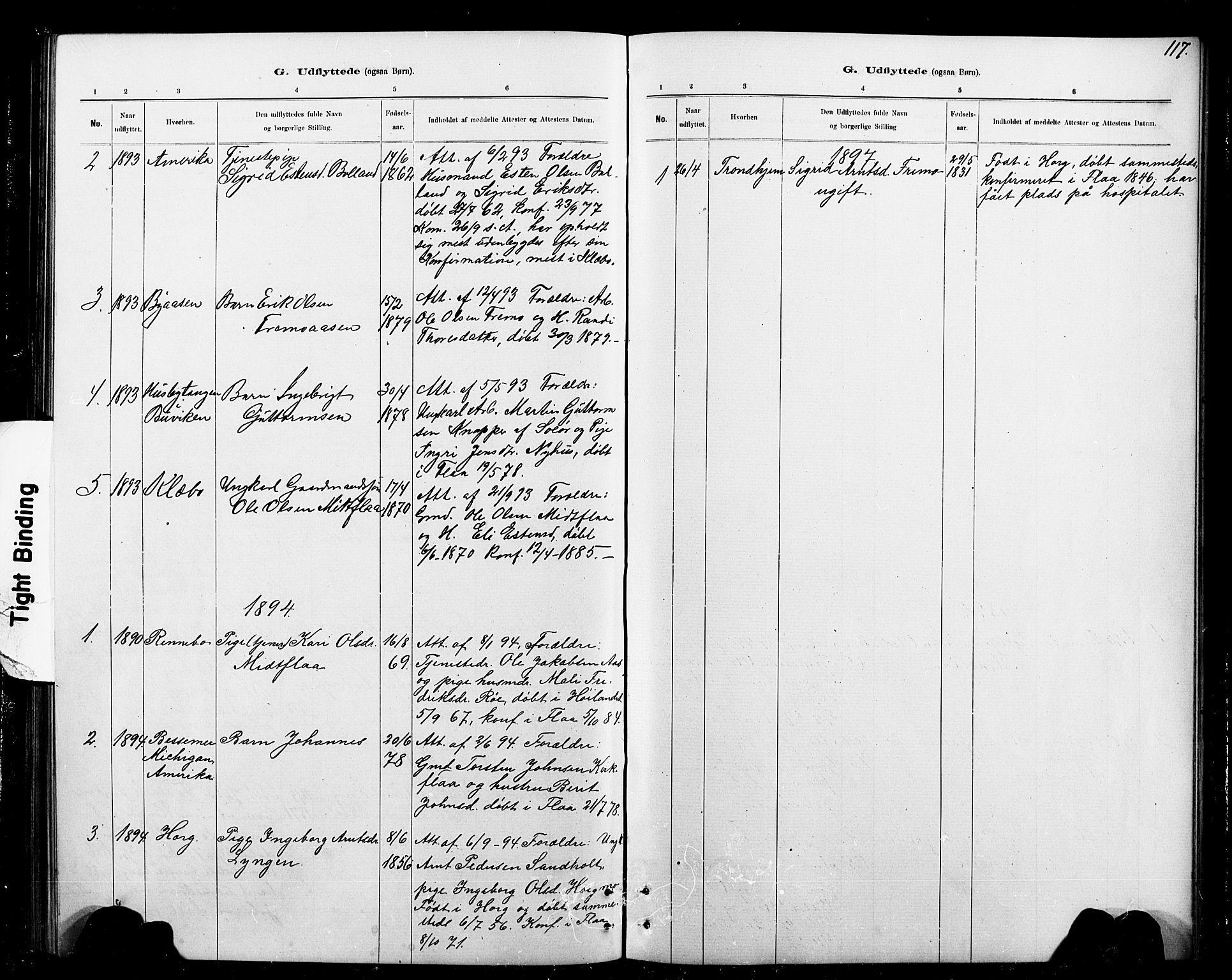 SAT, Ministerialprotokoller, klokkerbøker og fødselsregistre - Sør-Trøndelag, 693/L1123: Klokkerbok nr. 693C04, 1887-1910, s. 117