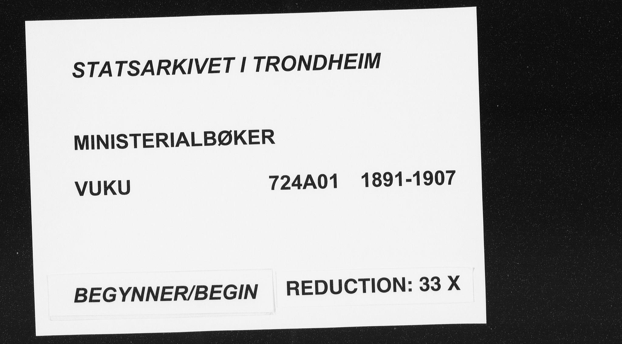 SAT, Ministerialprotokoller, klokkerbøker og fødselsregistre - Nord-Trøndelag, 724/L0263: Ministerialbok nr. 724A01, 1891-1907