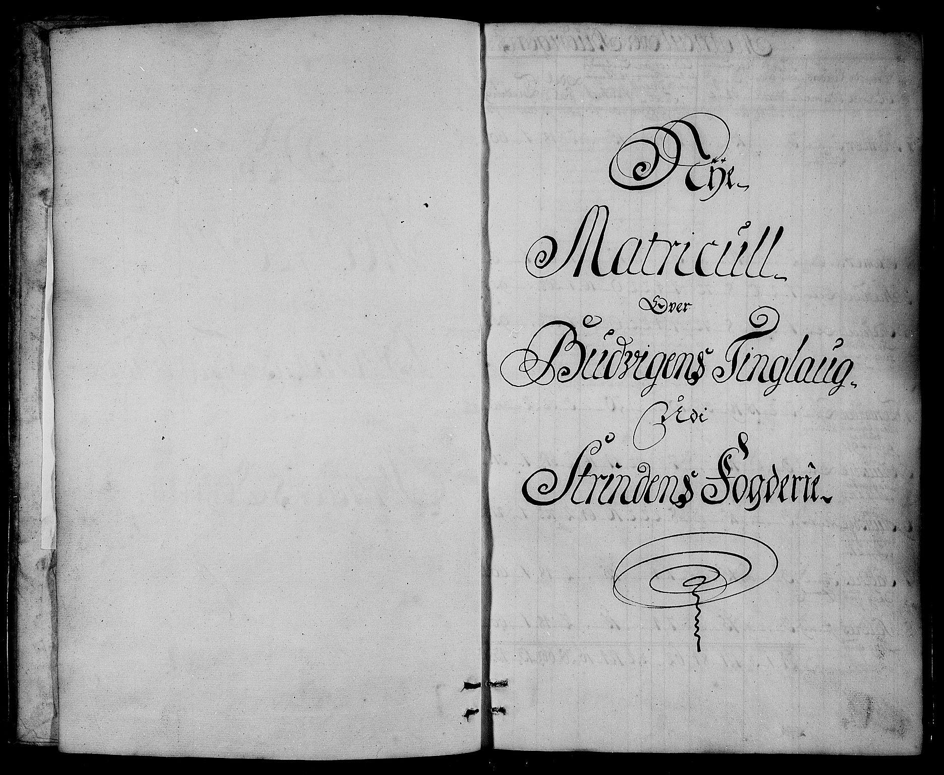 RA, Rentekammeret inntil 1814, Realistisk ordnet avdeling, N/Nb/Nbf/L0161: Strinda og Selbu matrikkelprotokoll, 1723, s. upaginert