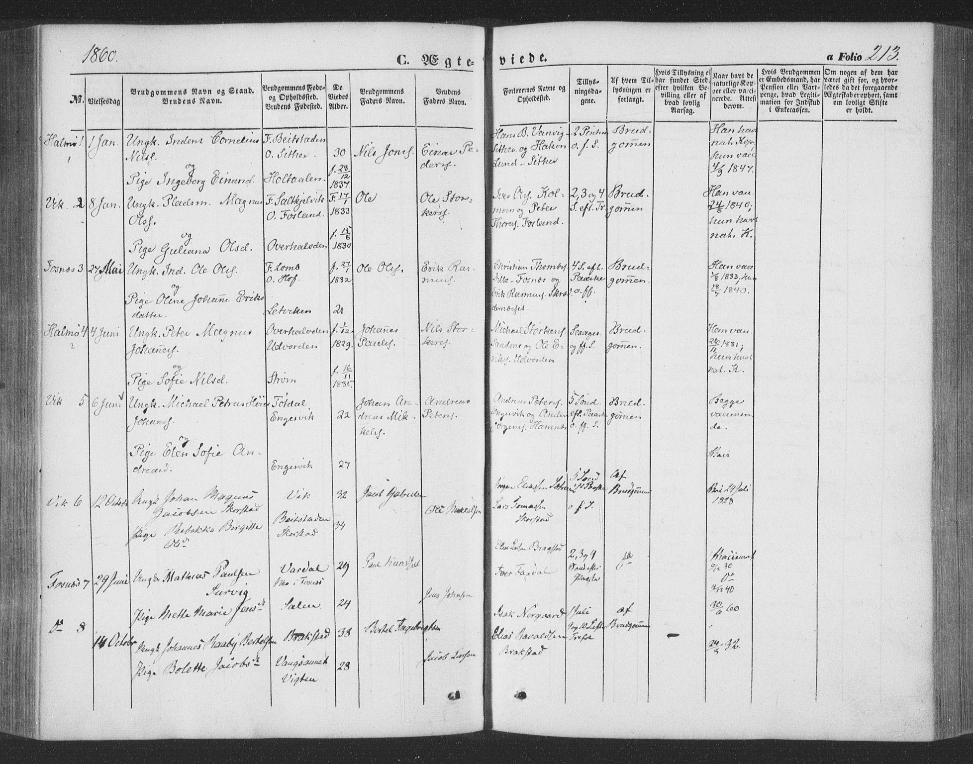 SAT, Ministerialprotokoller, klokkerbøker og fødselsregistre - Nord-Trøndelag, 773/L0615: Ministerialbok nr. 773A06, 1857-1870, s. 213