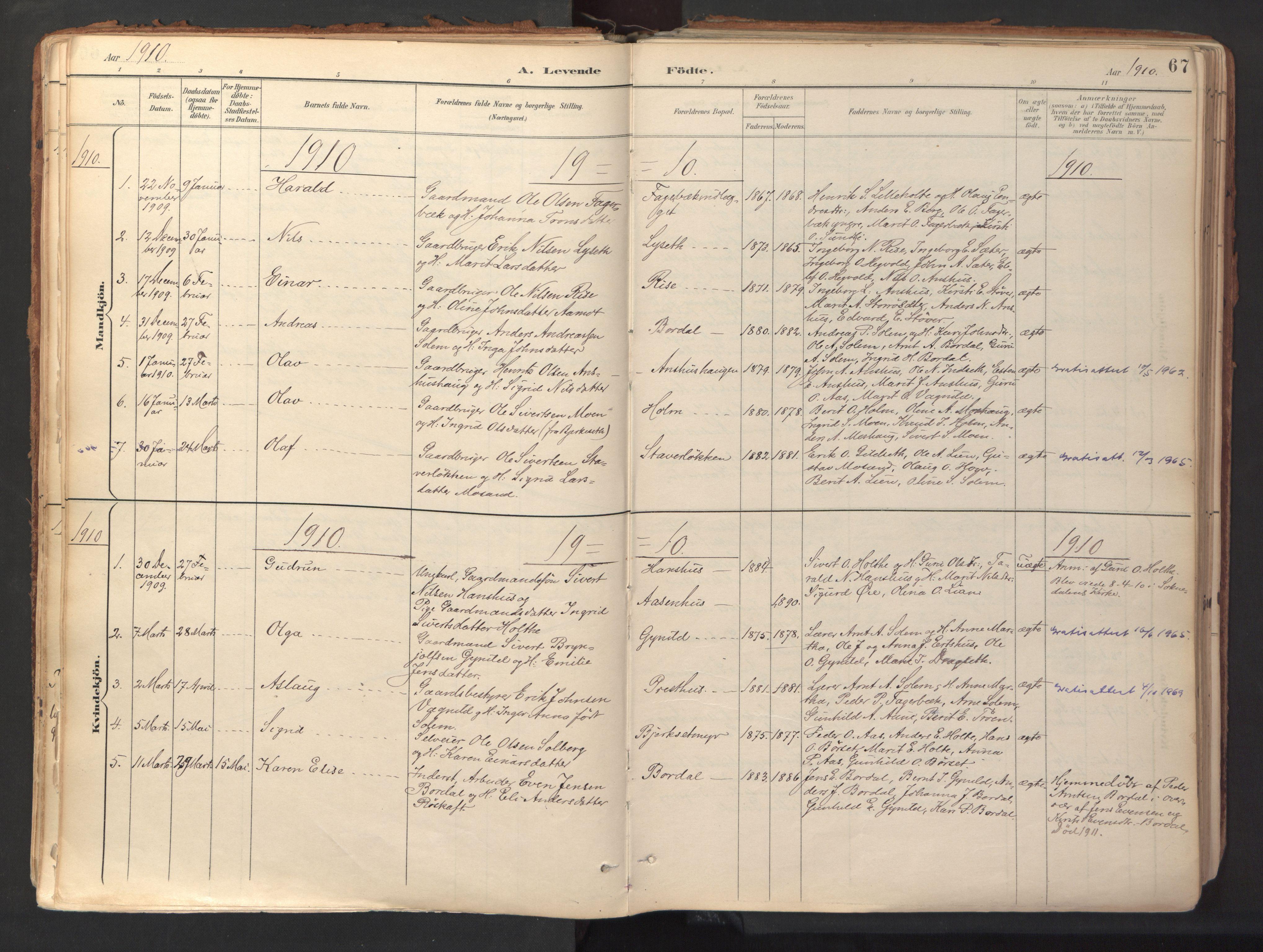 SAT, Ministerialprotokoller, klokkerbøker og fødselsregistre - Sør-Trøndelag, 689/L1041: Ministerialbok nr. 689A06, 1891-1923, s. 67