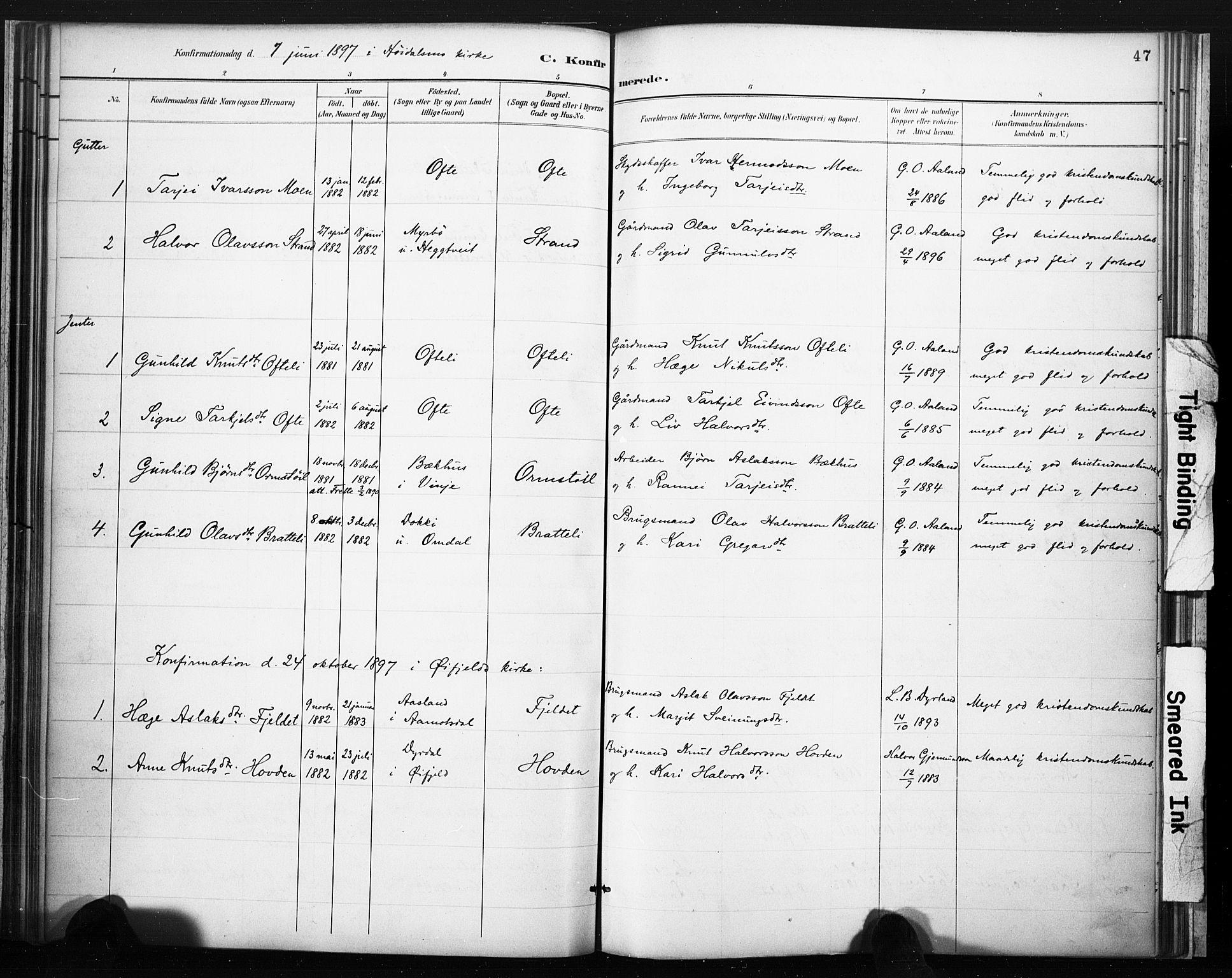 SAKO, Lårdal kirkebøker, F/Fc/L0002: Ministerialbok nr. III 2, 1887-1906, s. 47