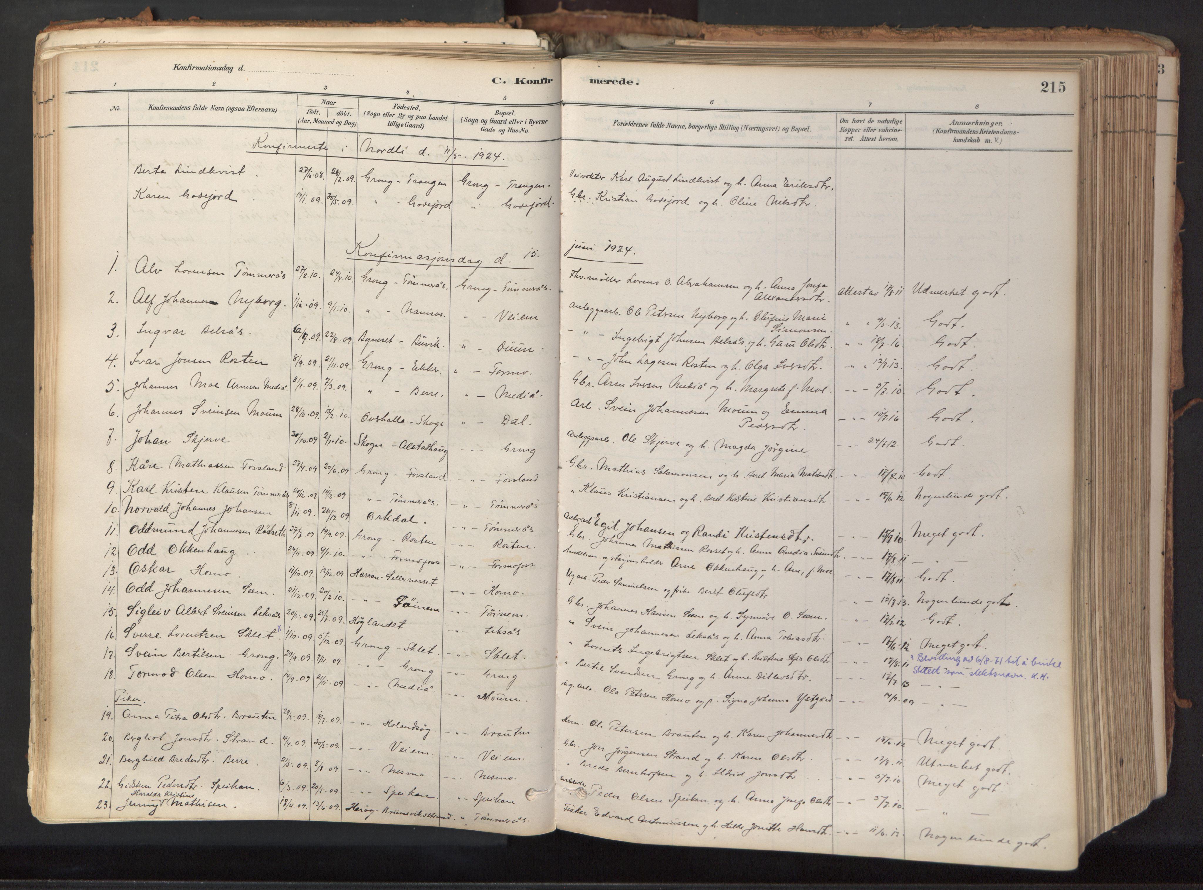 SAT, Ministerialprotokoller, klokkerbøker og fødselsregistre - Nord-Trøndelag, 758/L0519: Ministerialbok nr. 758A04, 1880-1926, s. 215