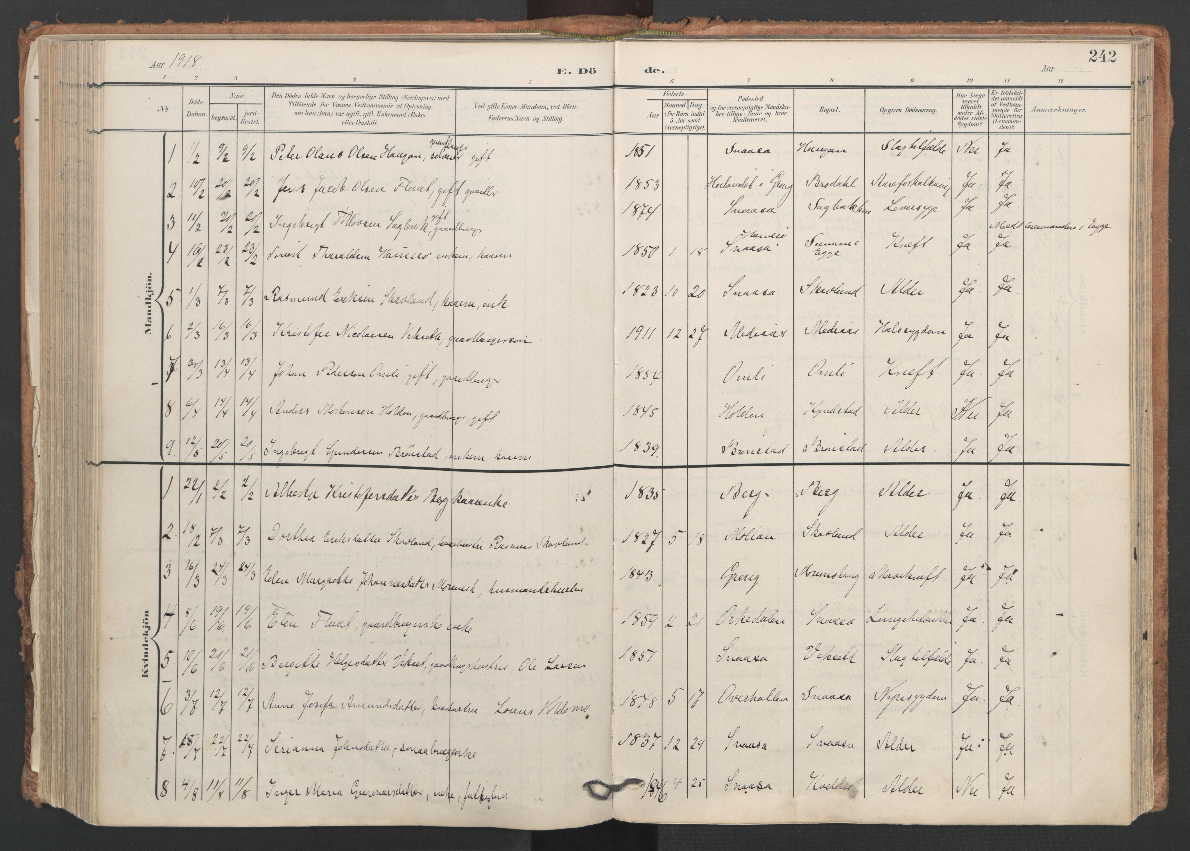 SAT, Ministerialprotokoller, klokkerbøker og fødselsregistre - Nord-Trøndelag, 749/L0477: Ministerialbok nr. 749A11, 1902-1927, s. 242