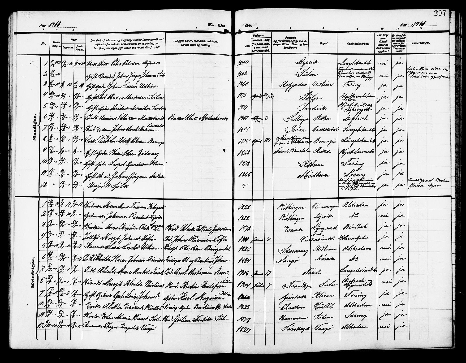 SAT, Ministerialprotokoller, klokkerbøker og fødselsregistre - Sør-Trøndelag, 640/L0588: Klokkerbok nr. 640C05, 1909-1922, s. 207