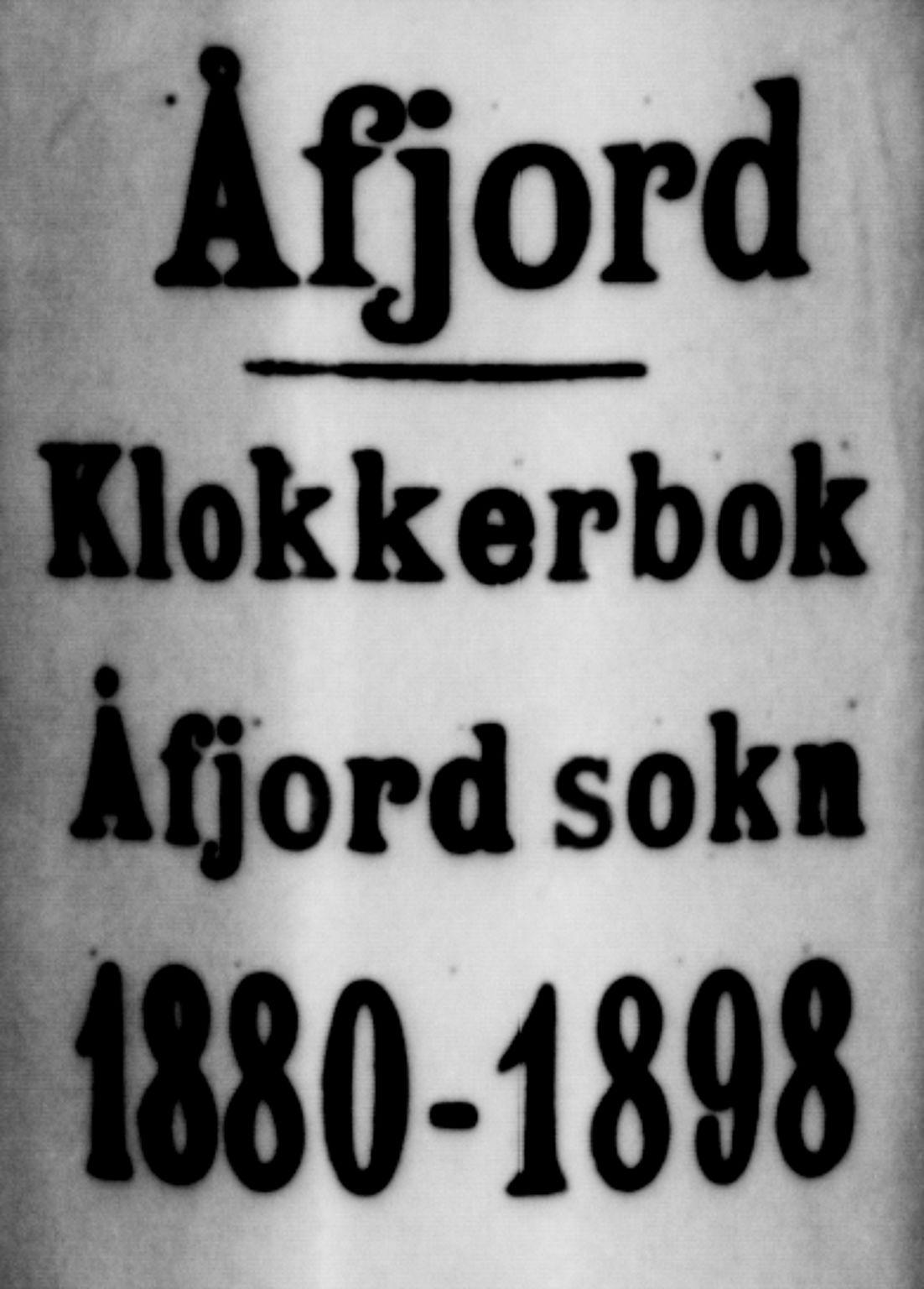SAT, Ministerialprotokoller, klokkerbøker og fødselsregistre - Sør-Trøndelag, 655/L0687: Klokkerbok nr. 655C03, 1880-1898