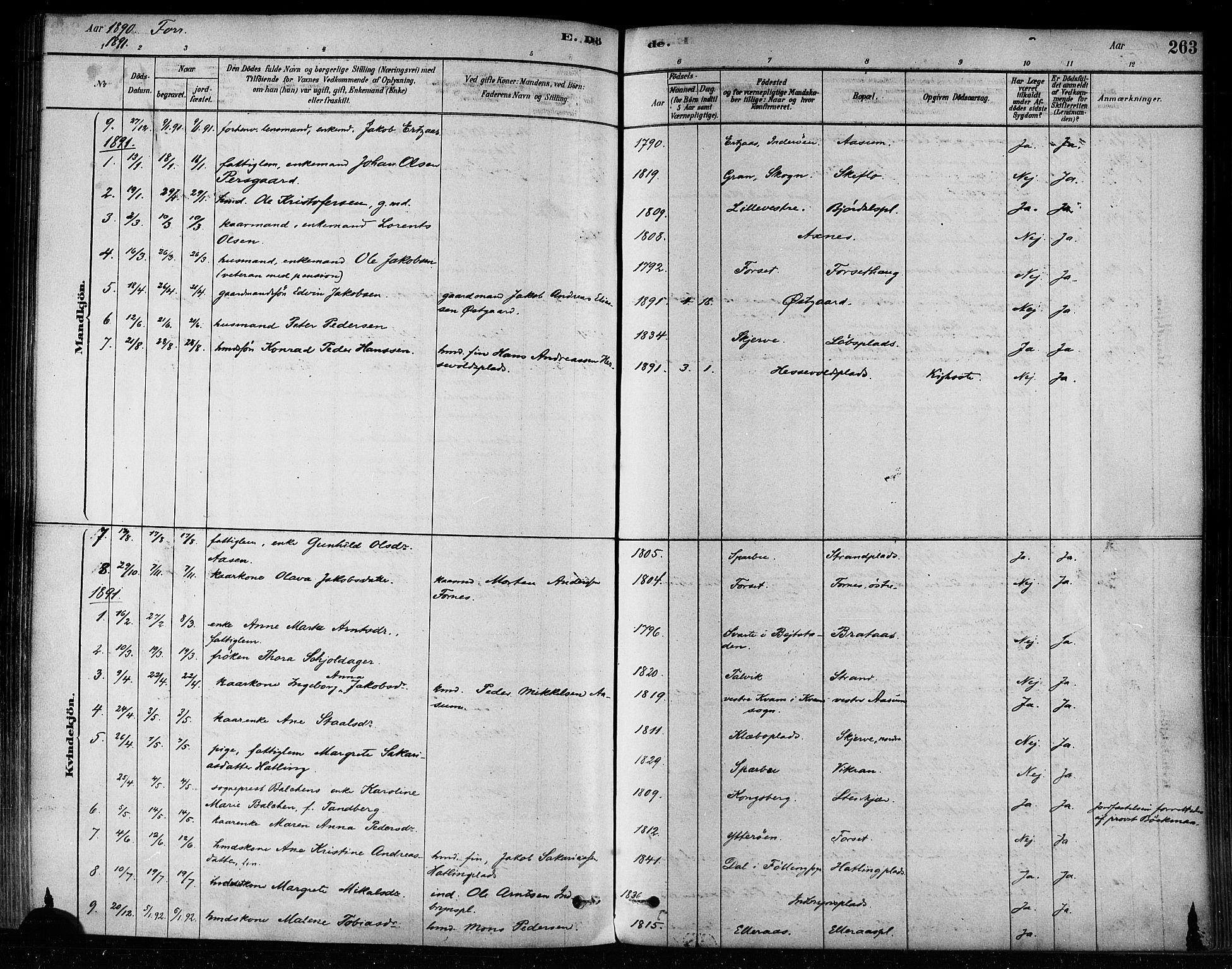 SAT, Ministerialprotokoller, klokkerbøker og fødselsregistre - Nord-Trøndelag, 746/L0448: Ministerialbok nr. 746A07 /1, 1878-1900, s. 263