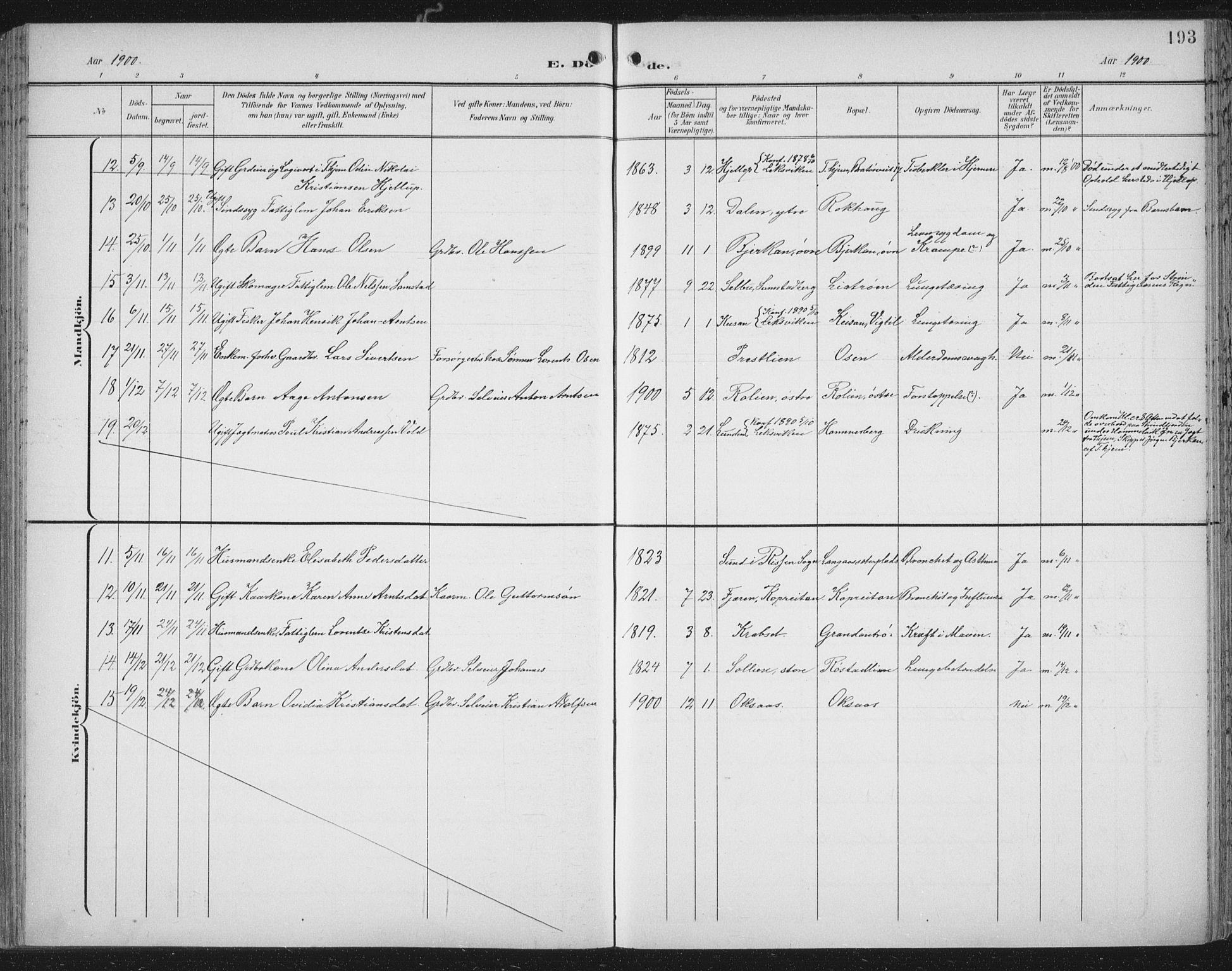 SAT, Ministerialprotokoller, klokkerbøker og fødselsregistre - Nord-Trøndelag, 701/L0011: Ministerialbok nr. 701A11, 1899-1915, s. 193