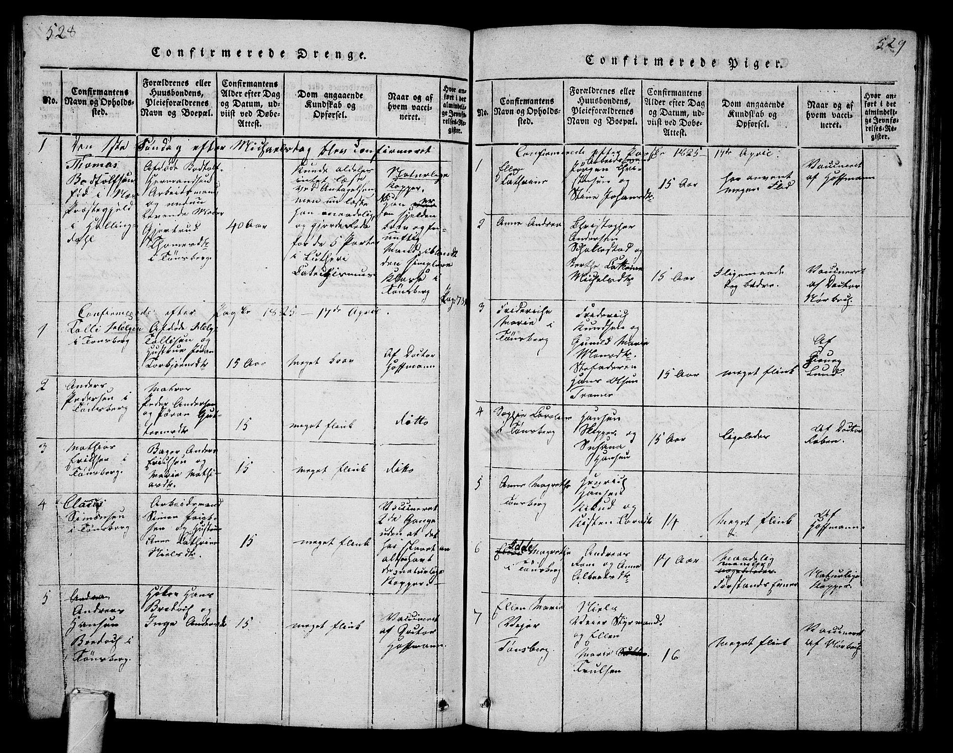 SAKO, Tønsberg kirkebøker, G/Ga/L0001: Klokkerbok nr. 1, 1813-1826, s. 528-529