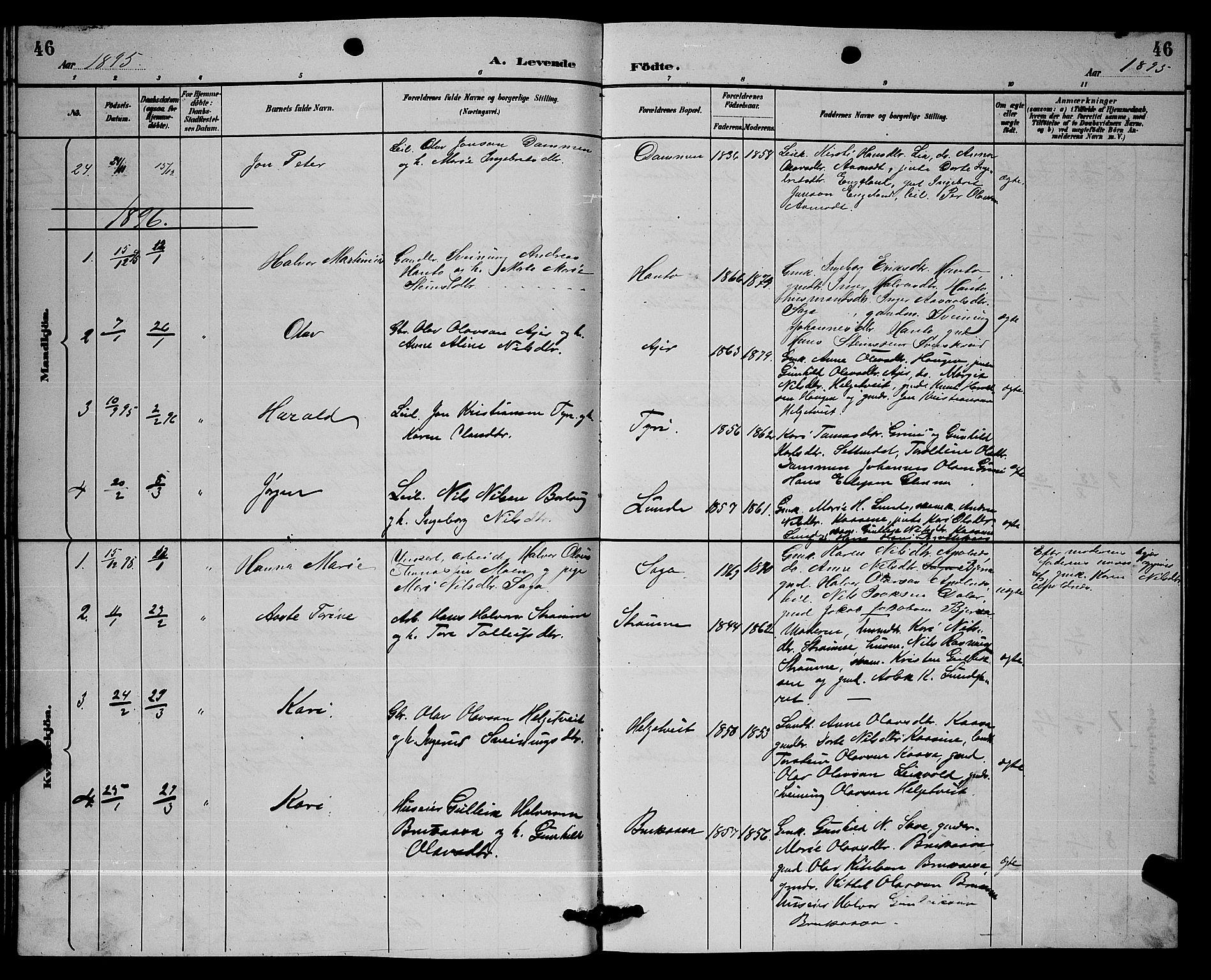 SAKO, Lunde kirkebøker, G/Ga/L0002: Klokkerbok nr. I 2, 1887-1896, s. 46