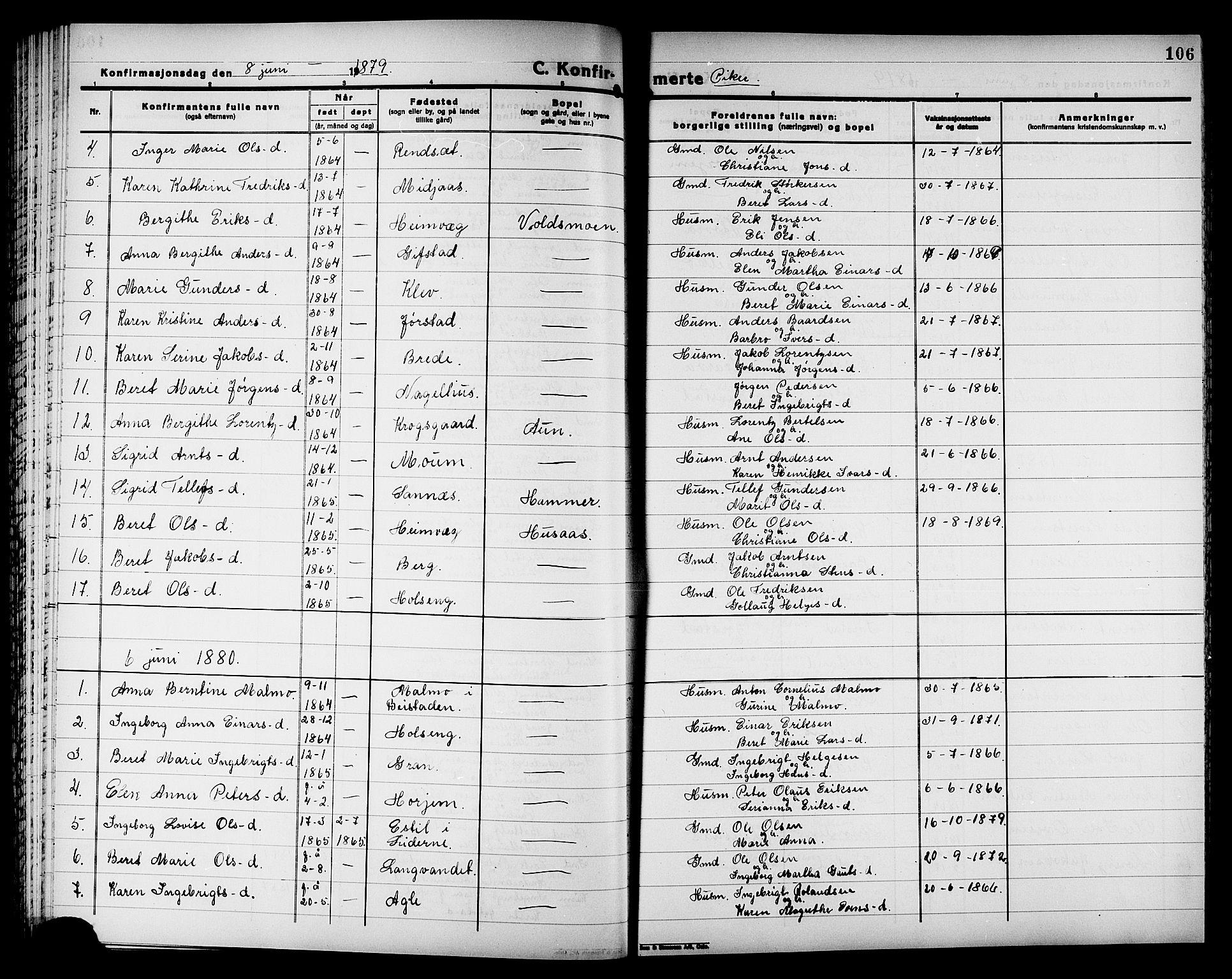 SAT, Ministerialprotokoller, klokkerbøker og fødselsregistre - Nord-Trøndelag, 749/L0486: Ministerialbok nr. 749D02, 1873-1887, s. 106