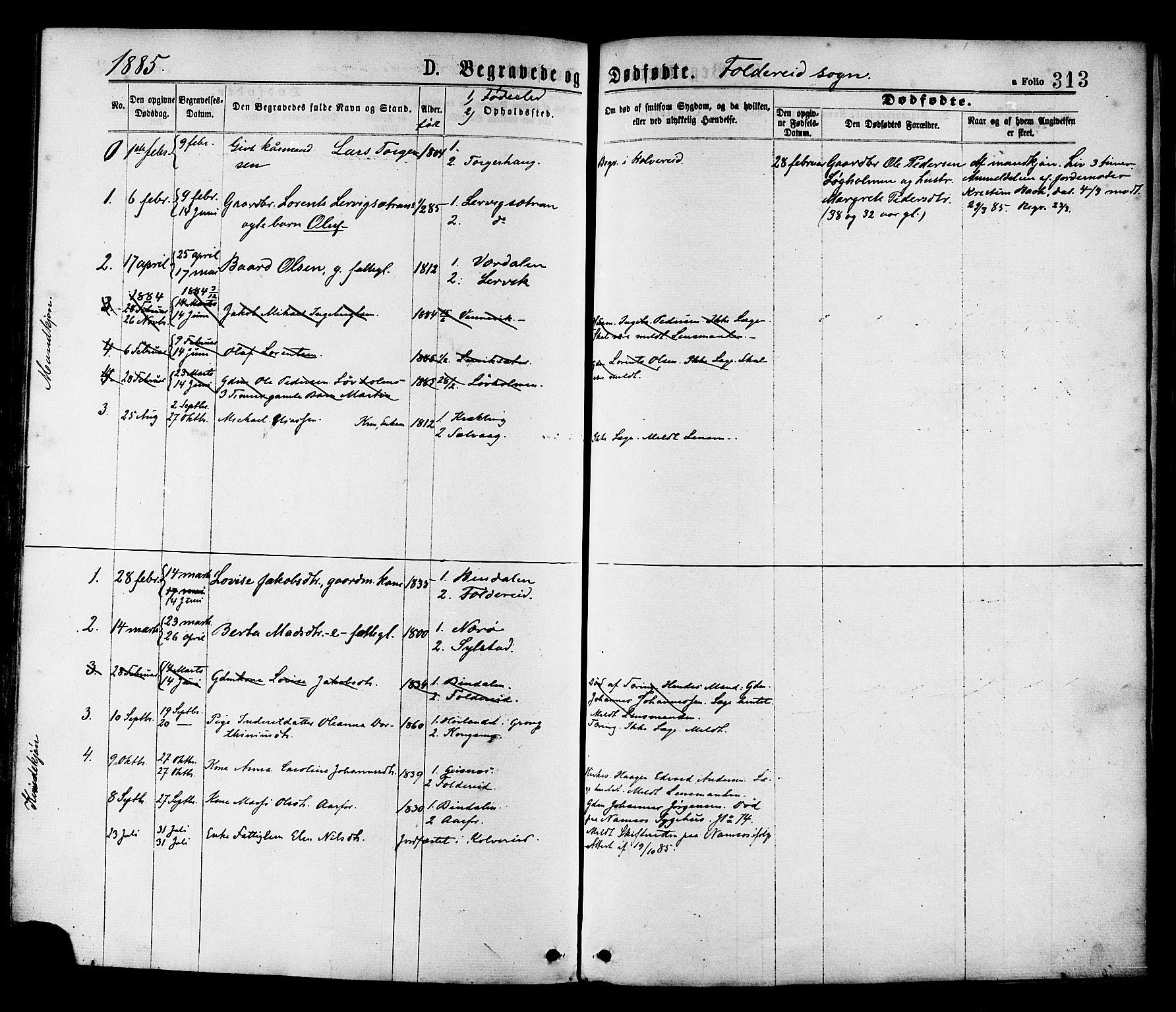 SAT, Ministerialprotokoller, klokkerbøker og fødselsregistre - Nord-Trøndelag, 780/L0642: Ministerialbok nr. 780A07 /2, 1878-1885, s. 313