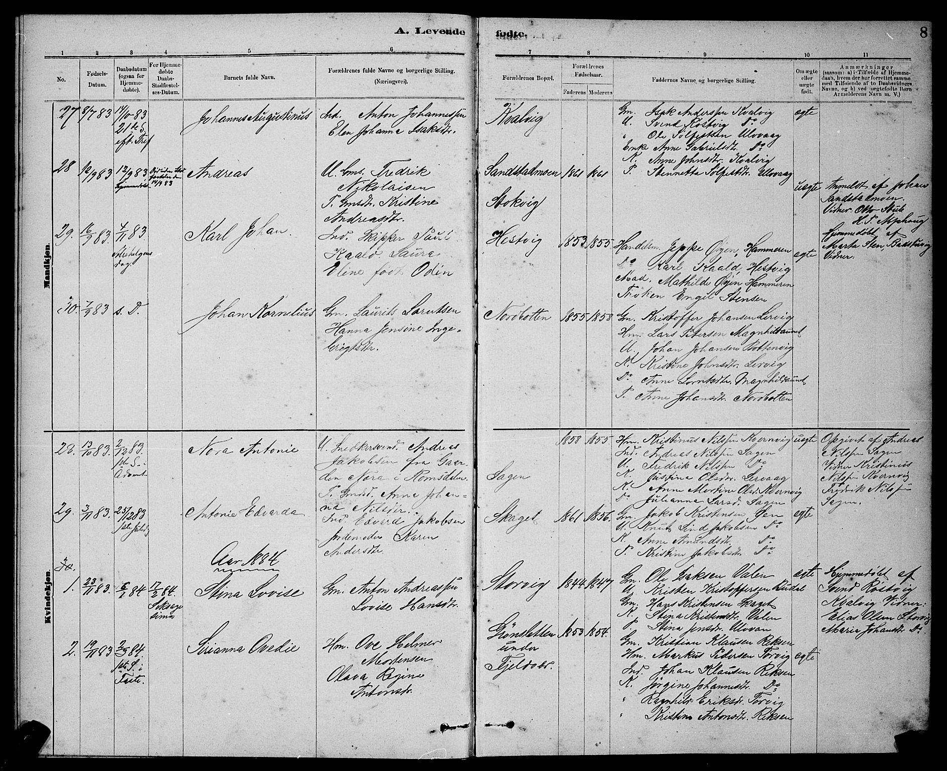 SAT, Ministerialprotokoller, klokkerbøker og fødselsregistre - Sør-Trøndelag, 637/L0562: Klokkerbok nr. 637C03, 1883-1898, s. 8